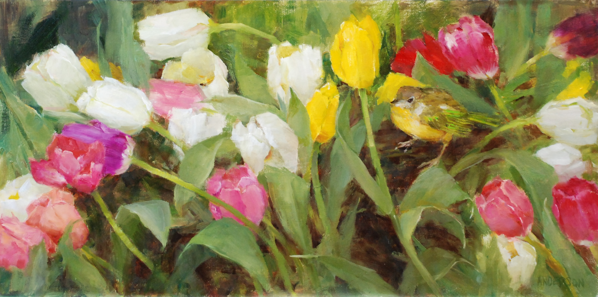 Tulips and Warbler by Kathy Anderson