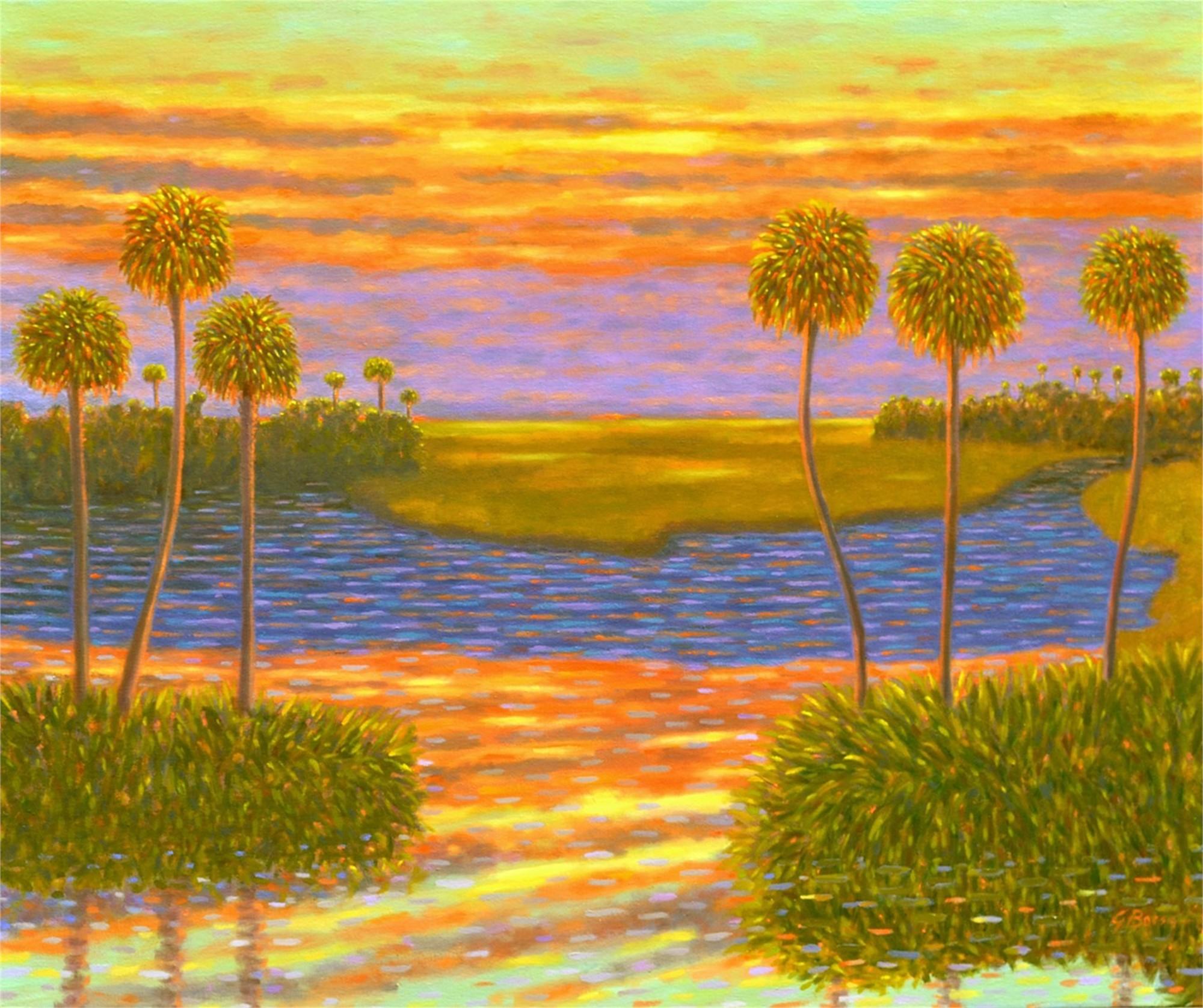 Sunset Interlude by Gary Borse