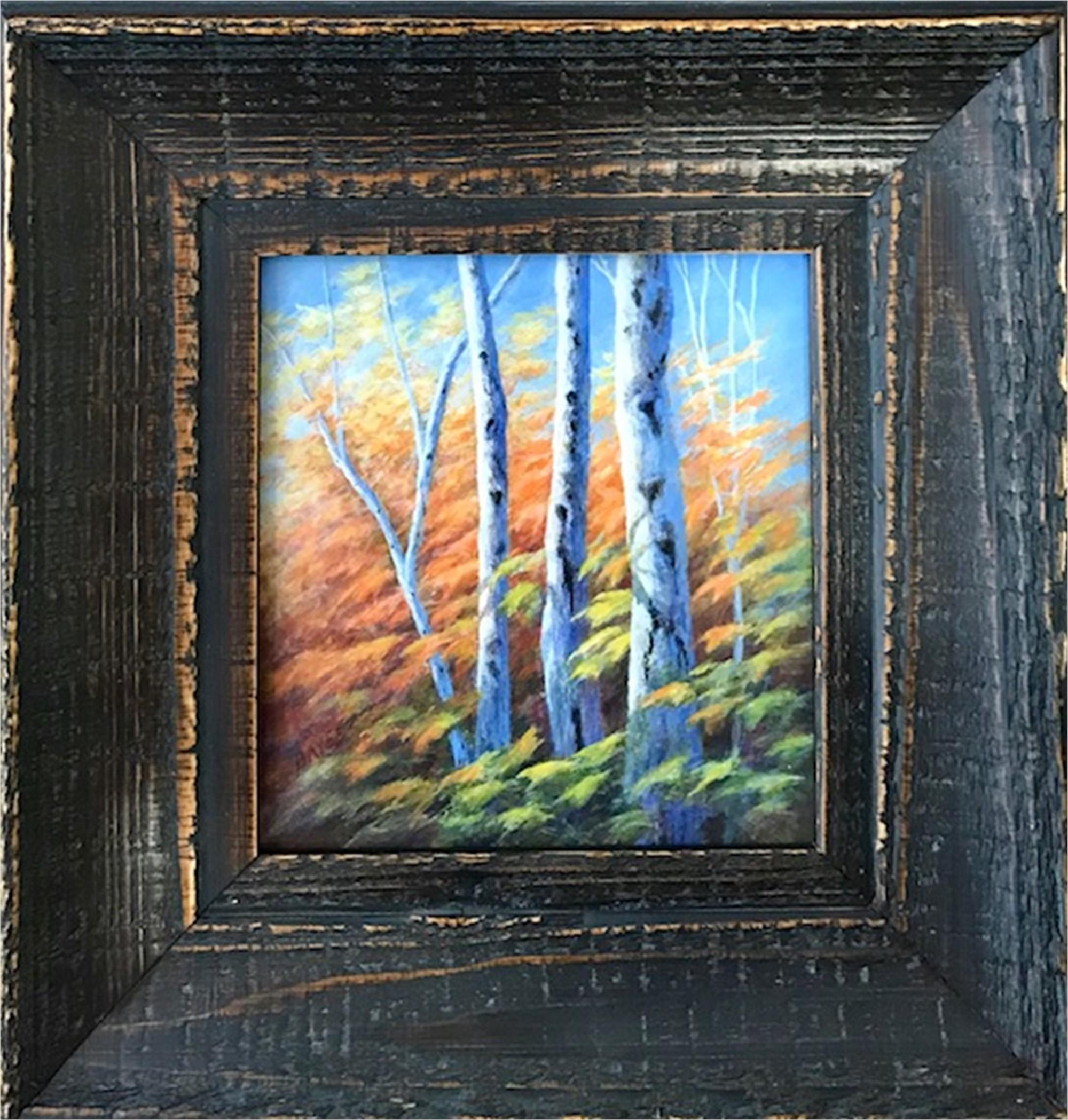 Autumn Rhythm by Judith Edgington Bayes