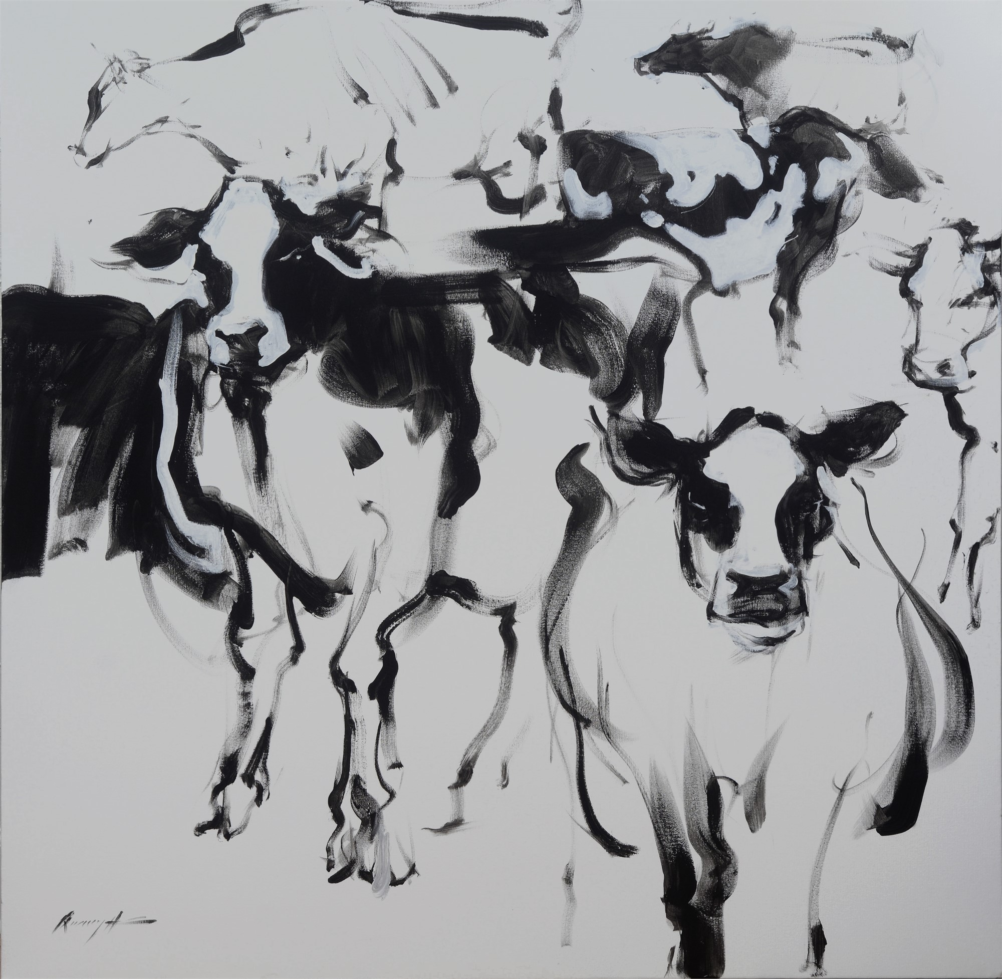 Cows 7 by Quang Ho