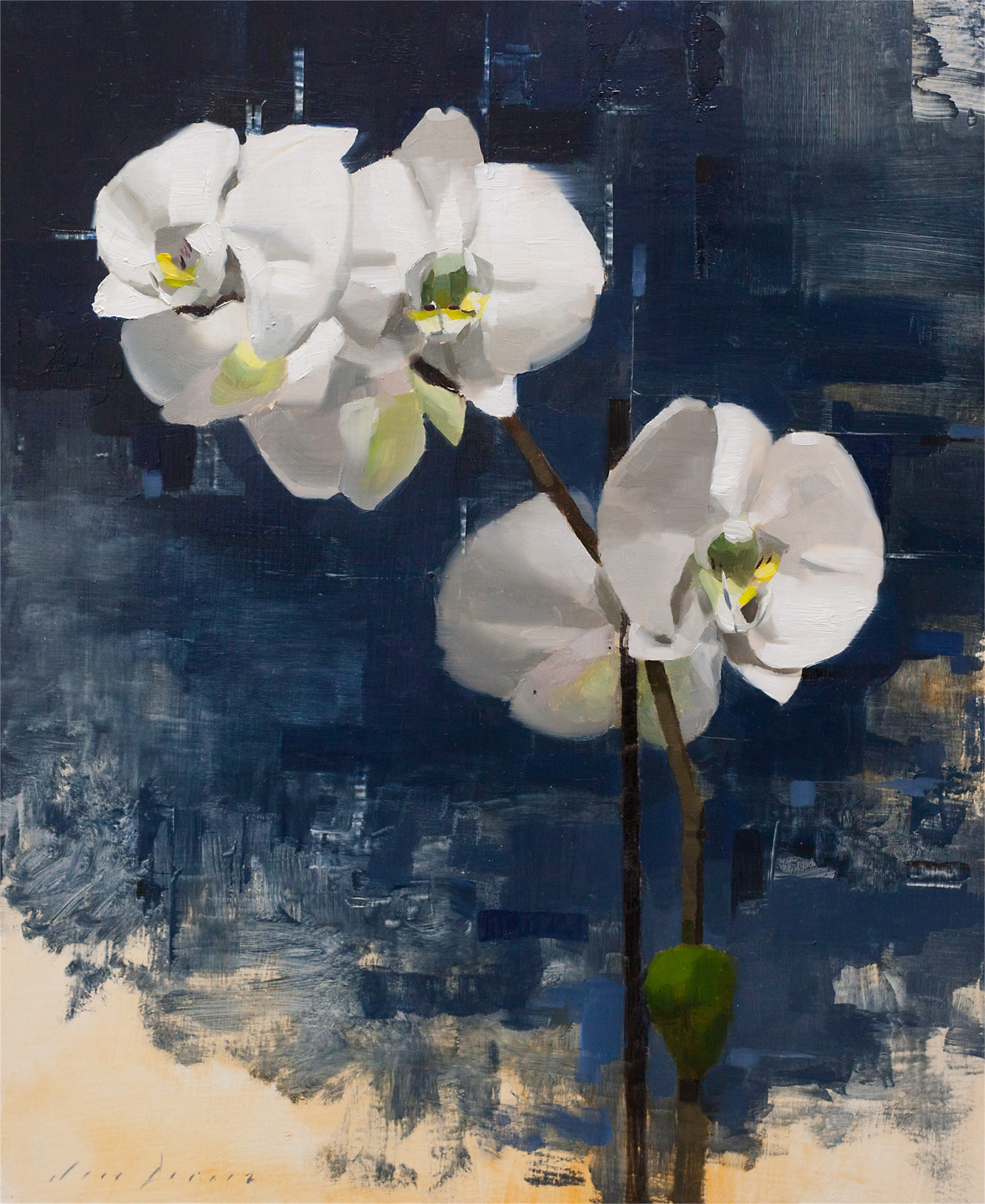 Orchid and Blue by Jon Doran
