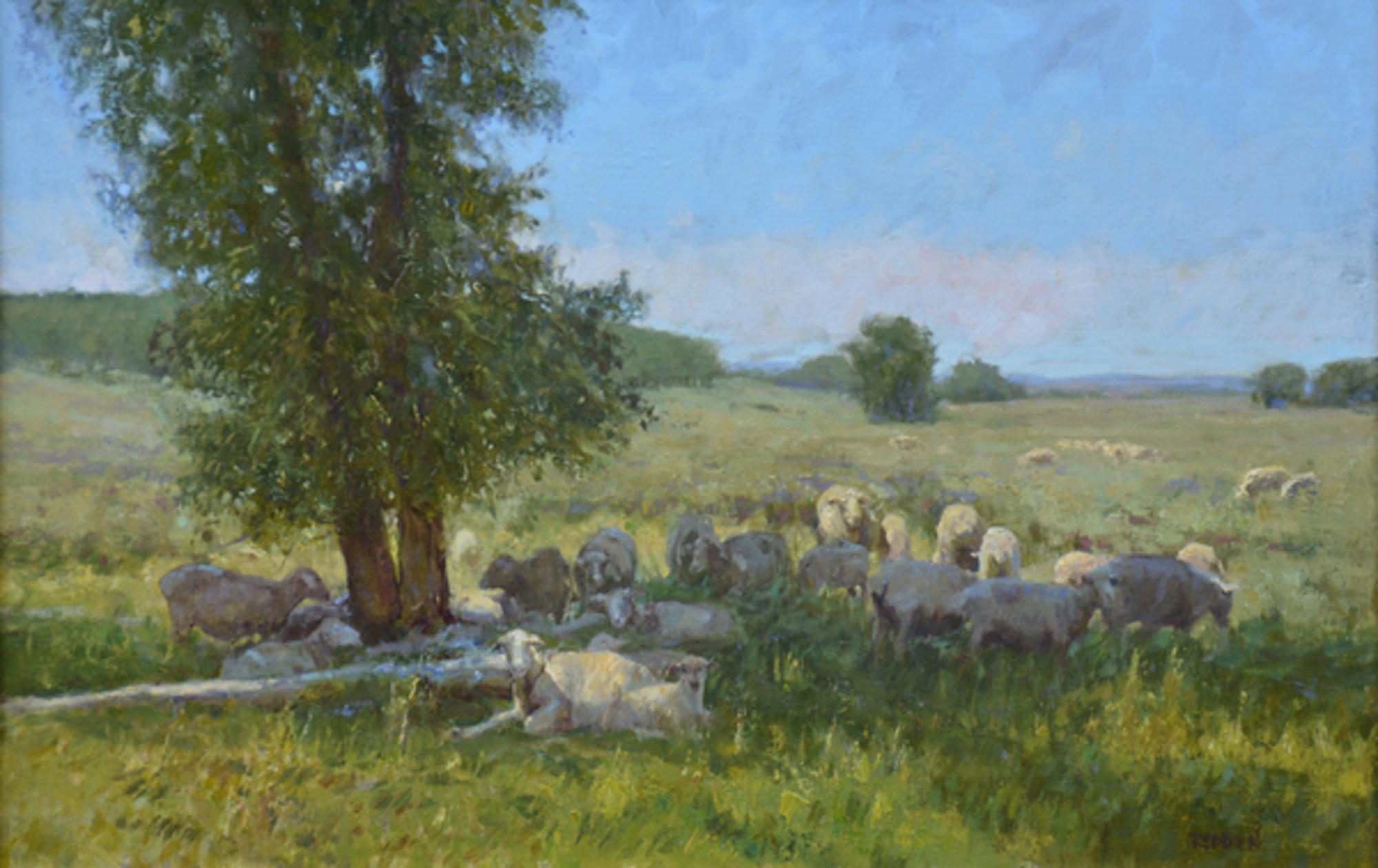 Resting in 29 by Grant Redden