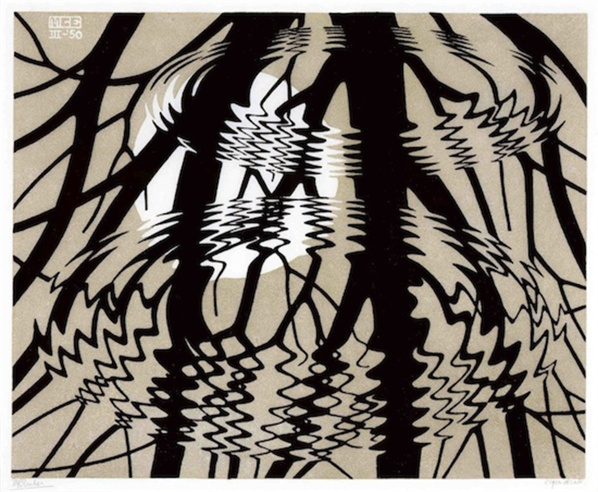 Rippled Surface by M.C. Escher