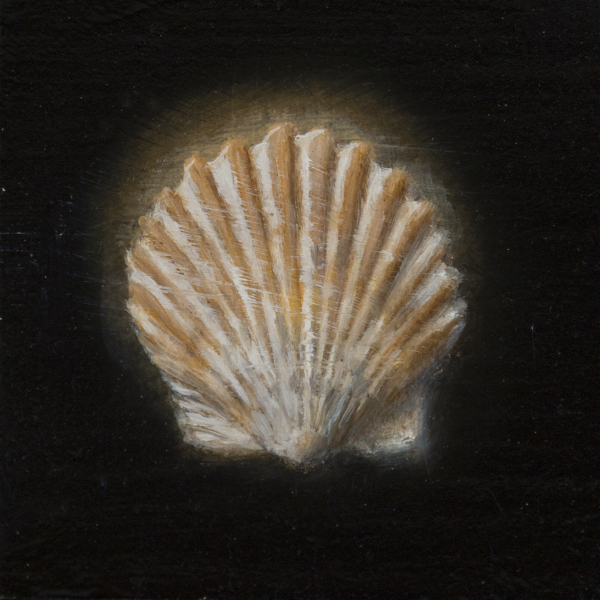 Shell 1 by Gregory Block