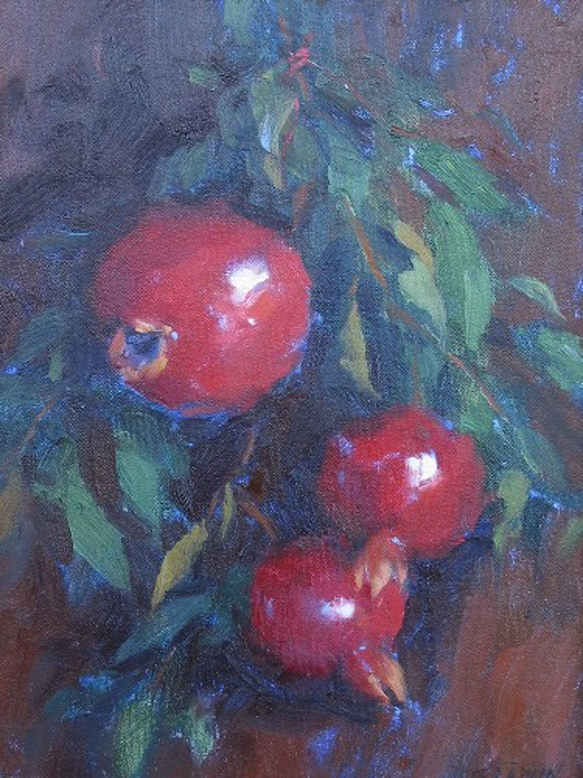 HANGING POMEGRANATES by GRAWIN