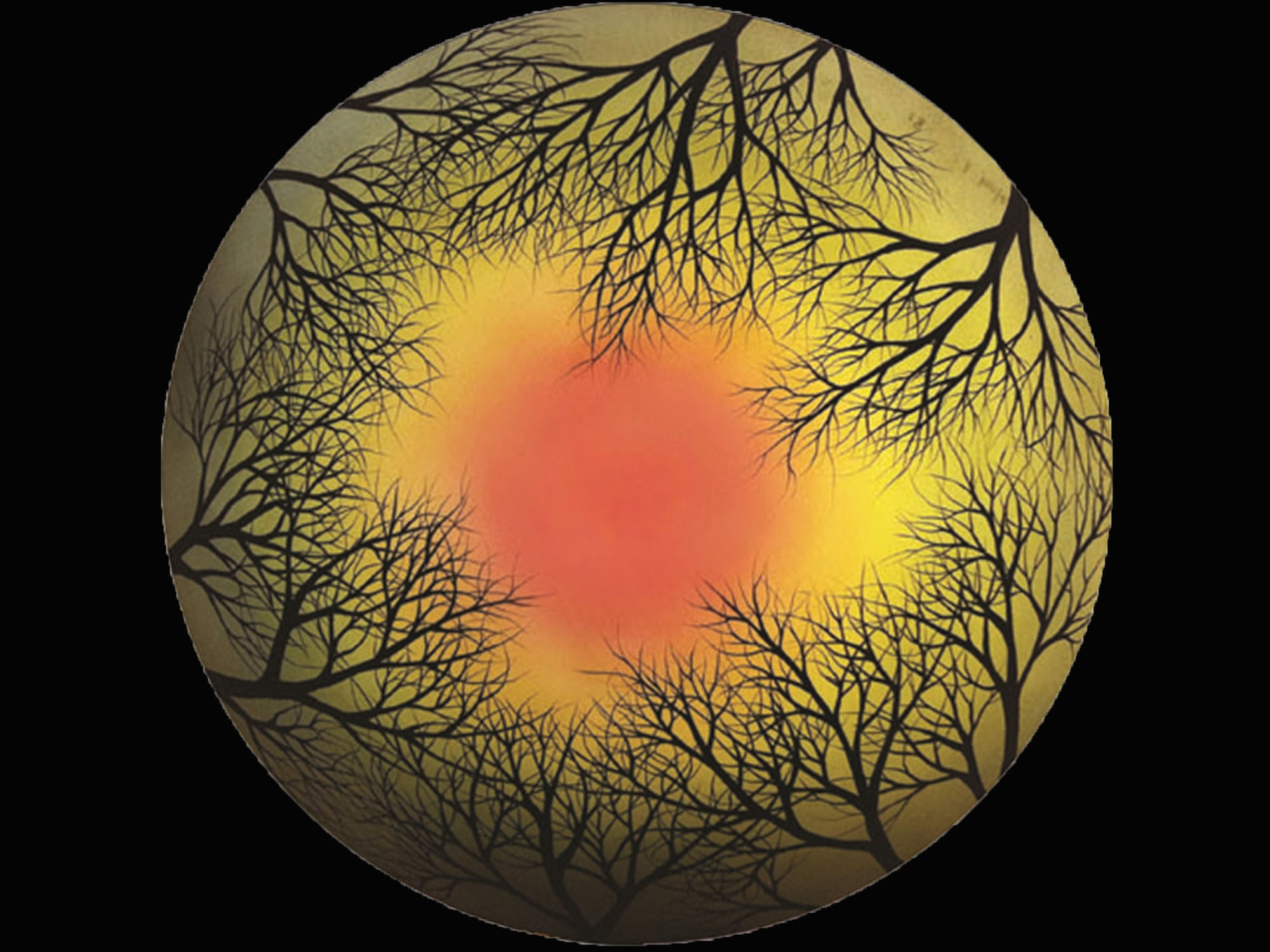 Design Treescape by Jamie Barthel