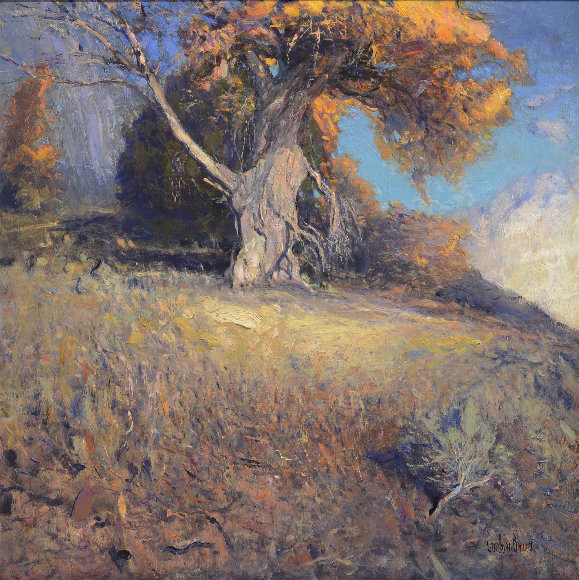 Old Cottonwood by Gordon Brown