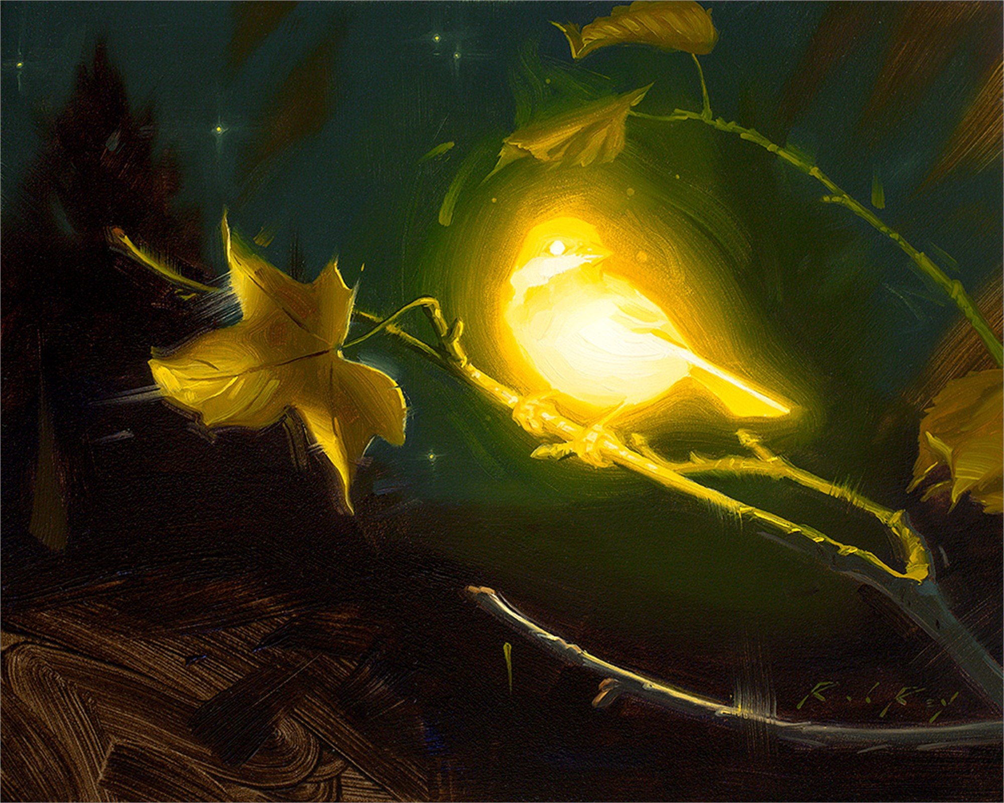Bioluminescence - Hope by Rob Rey
