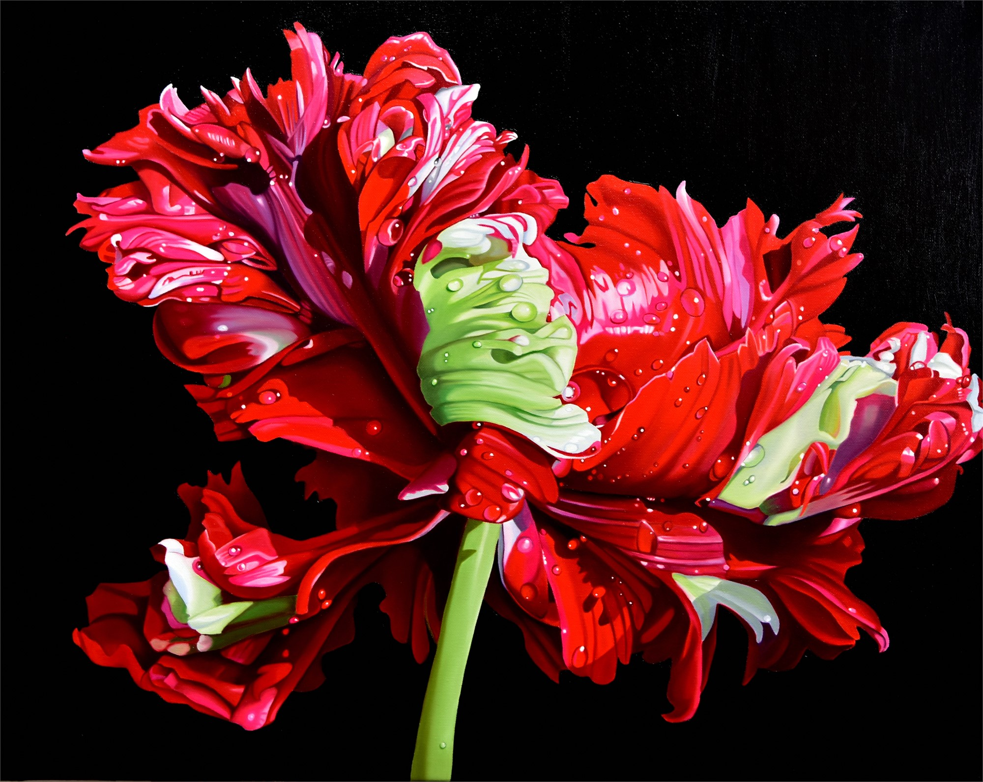 Tulip Fever by Suzy Smith
