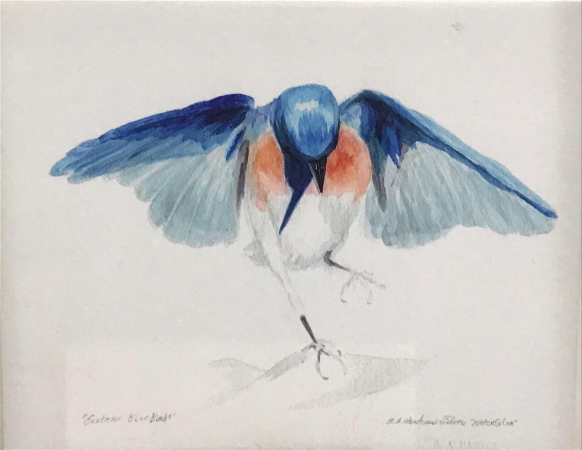 Papa Bluebird by Barbara Hawkins Silver