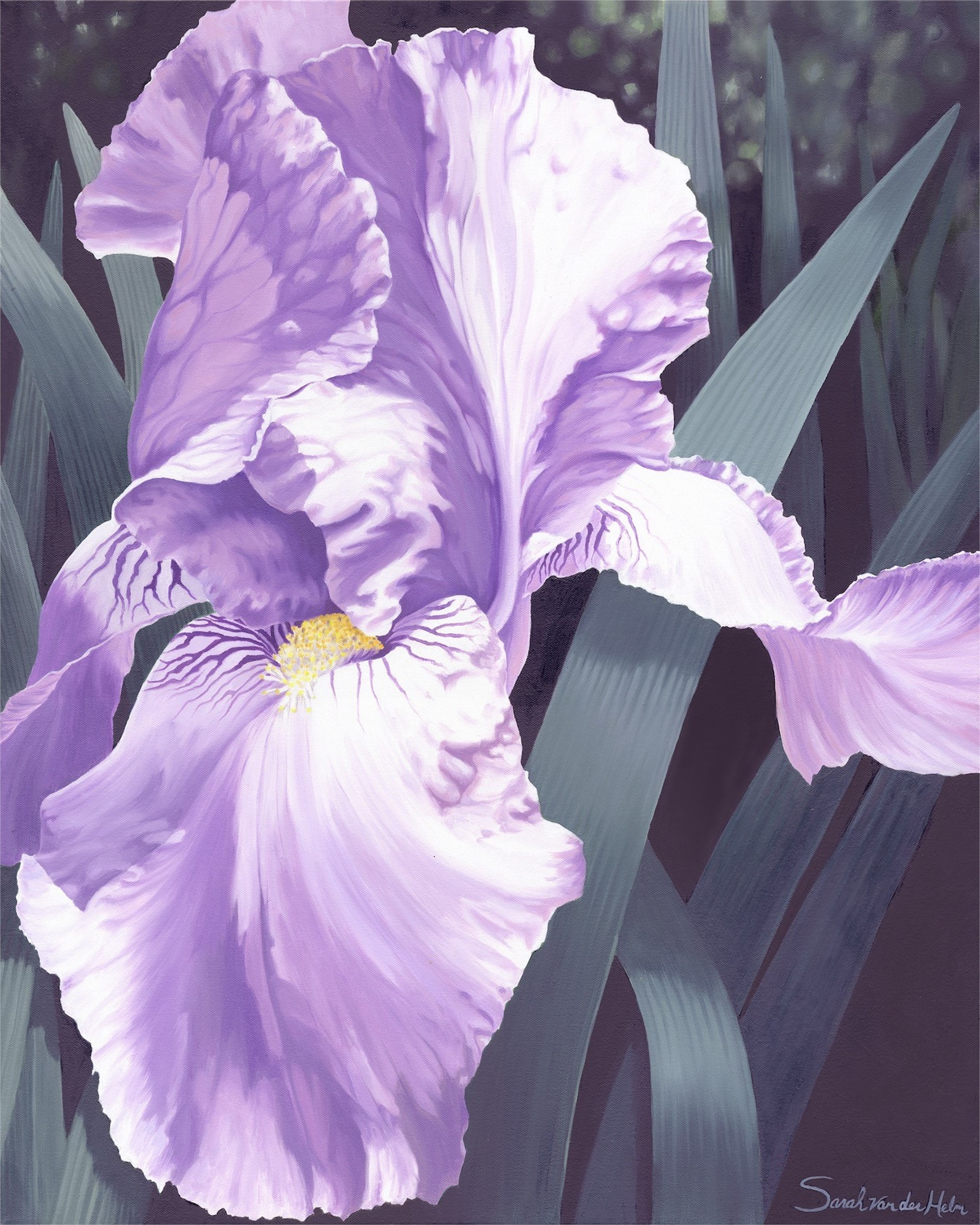 Iris II by Sarah van der Helm
