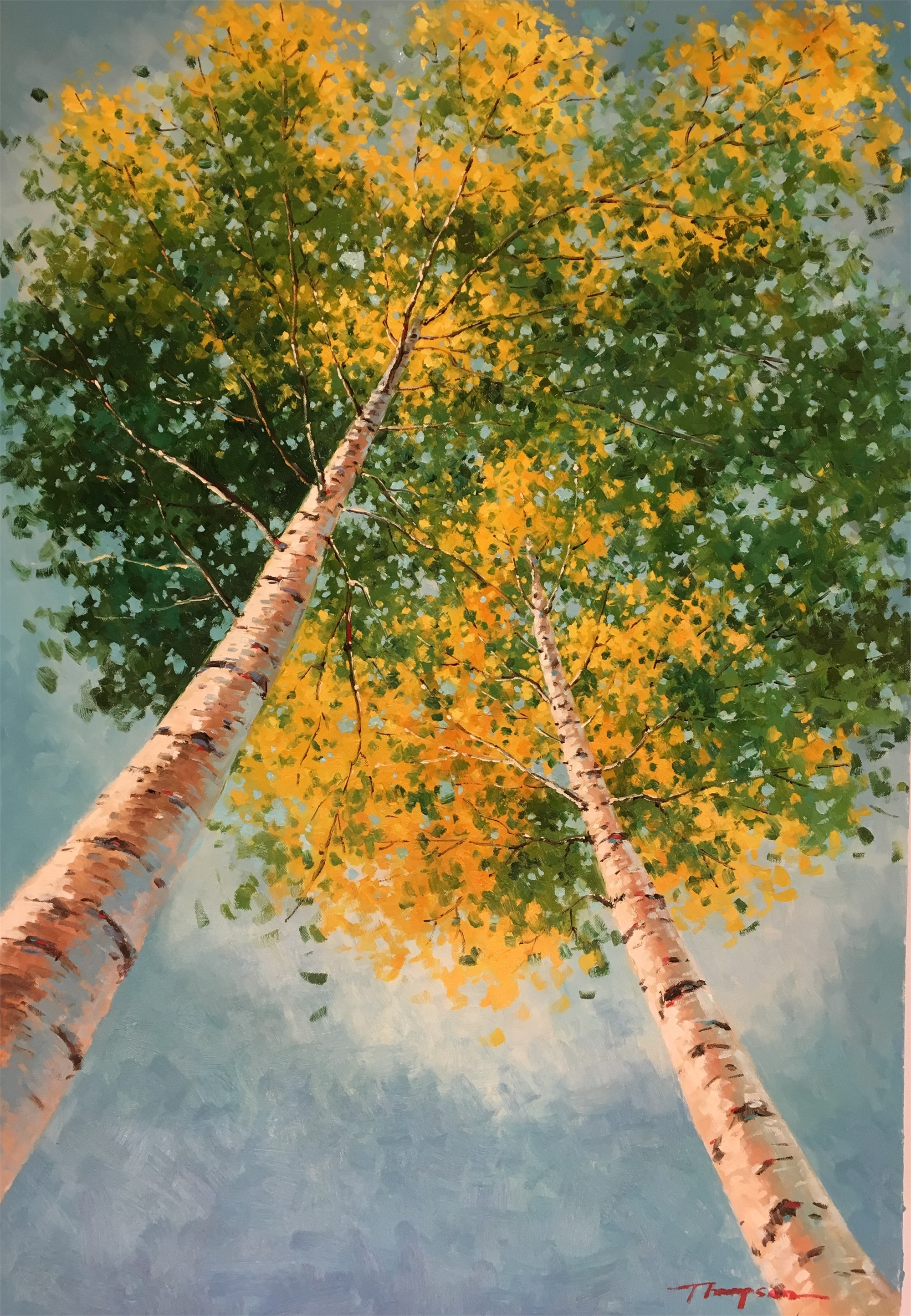 YELLOW ASPENS FROM BELOW by THOMPSON