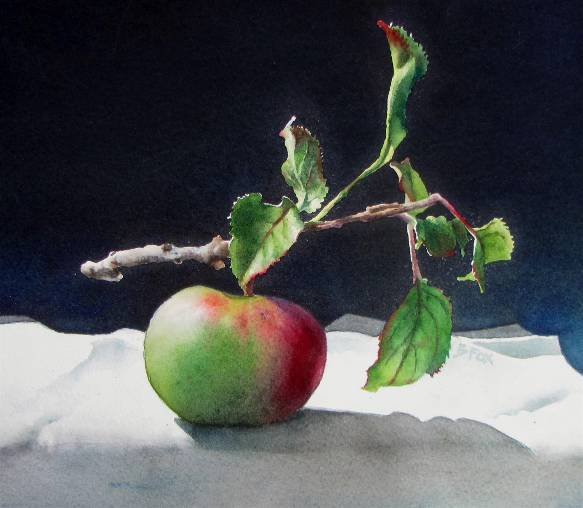 Organic by Barbara Fox
