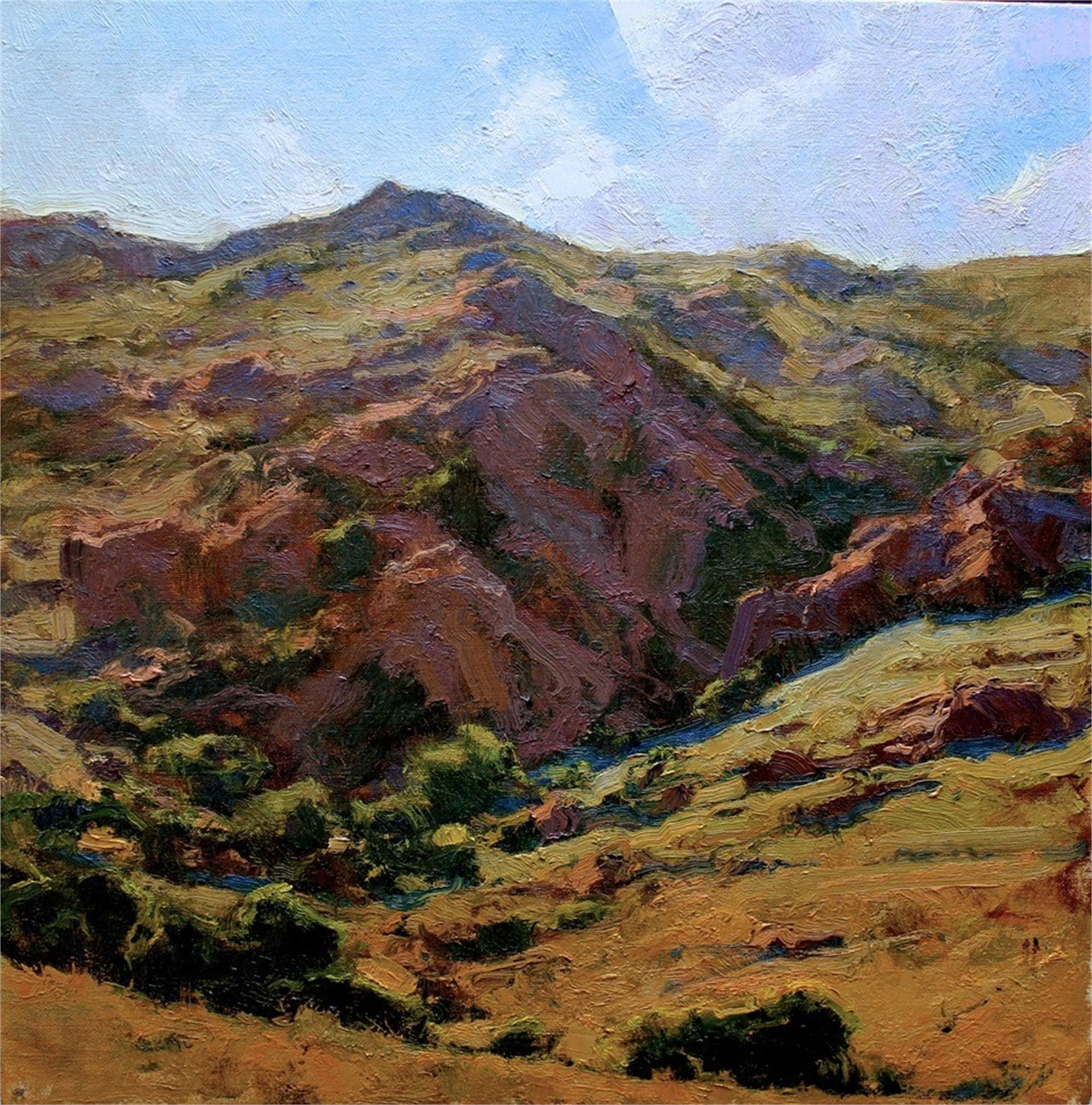 Canyon Shadow by Michael J Lynch