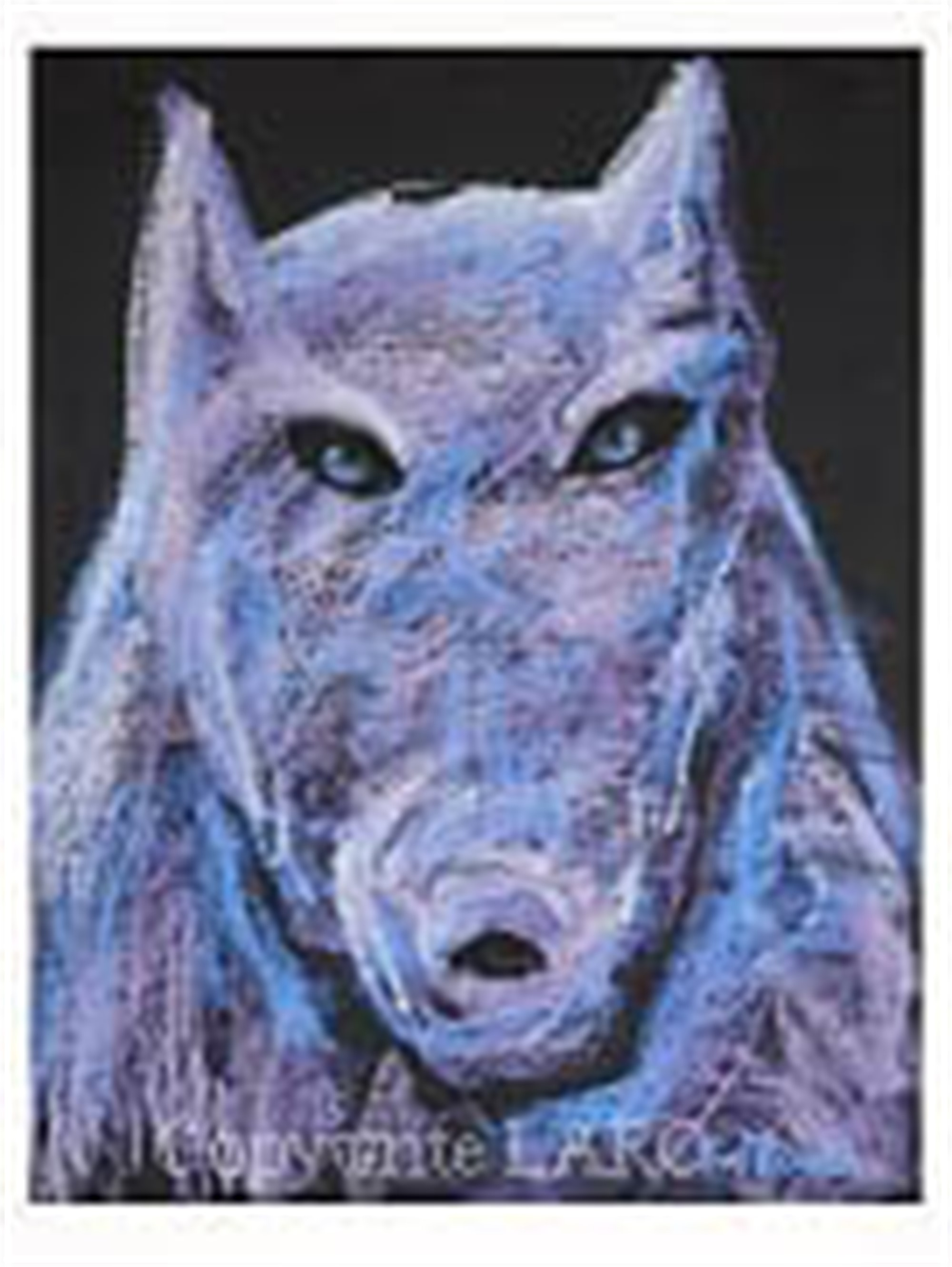 THE PACK: PURPLE WOLF by Carole LaRoche