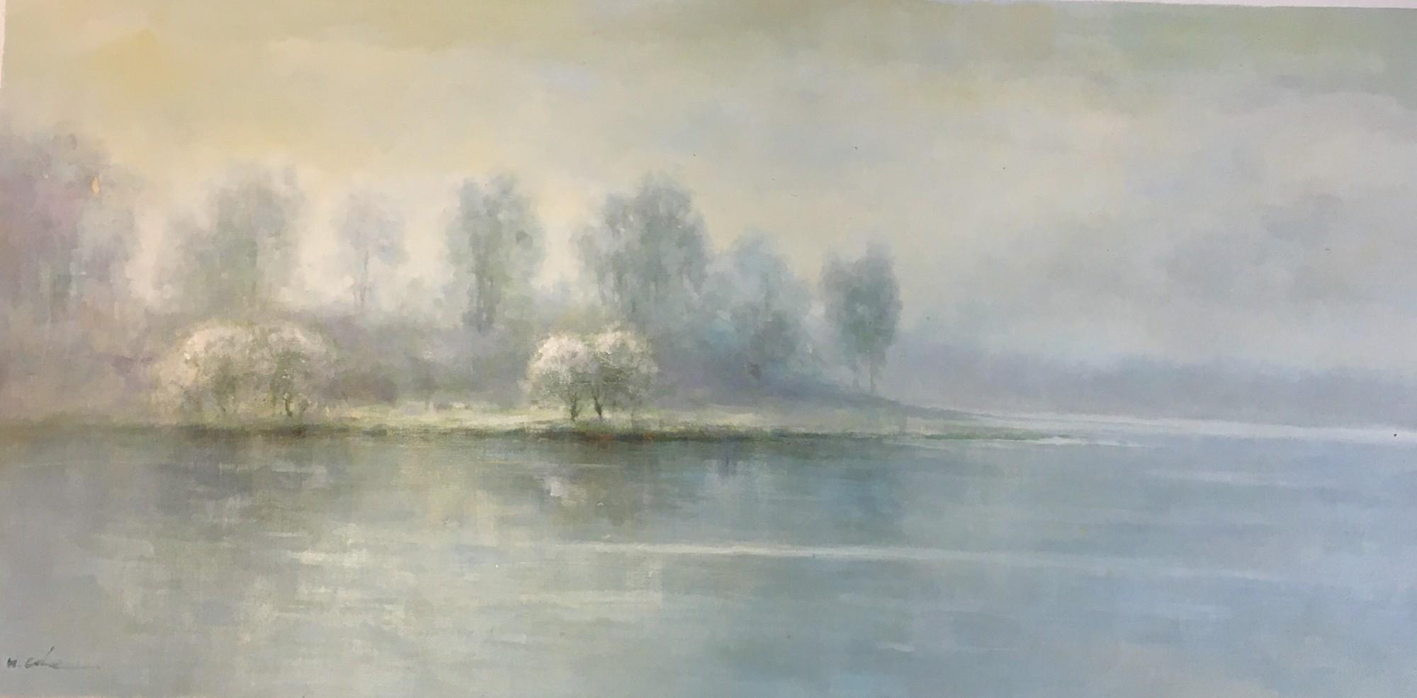 HORIZONTAL LAKE SCENE by H COLE