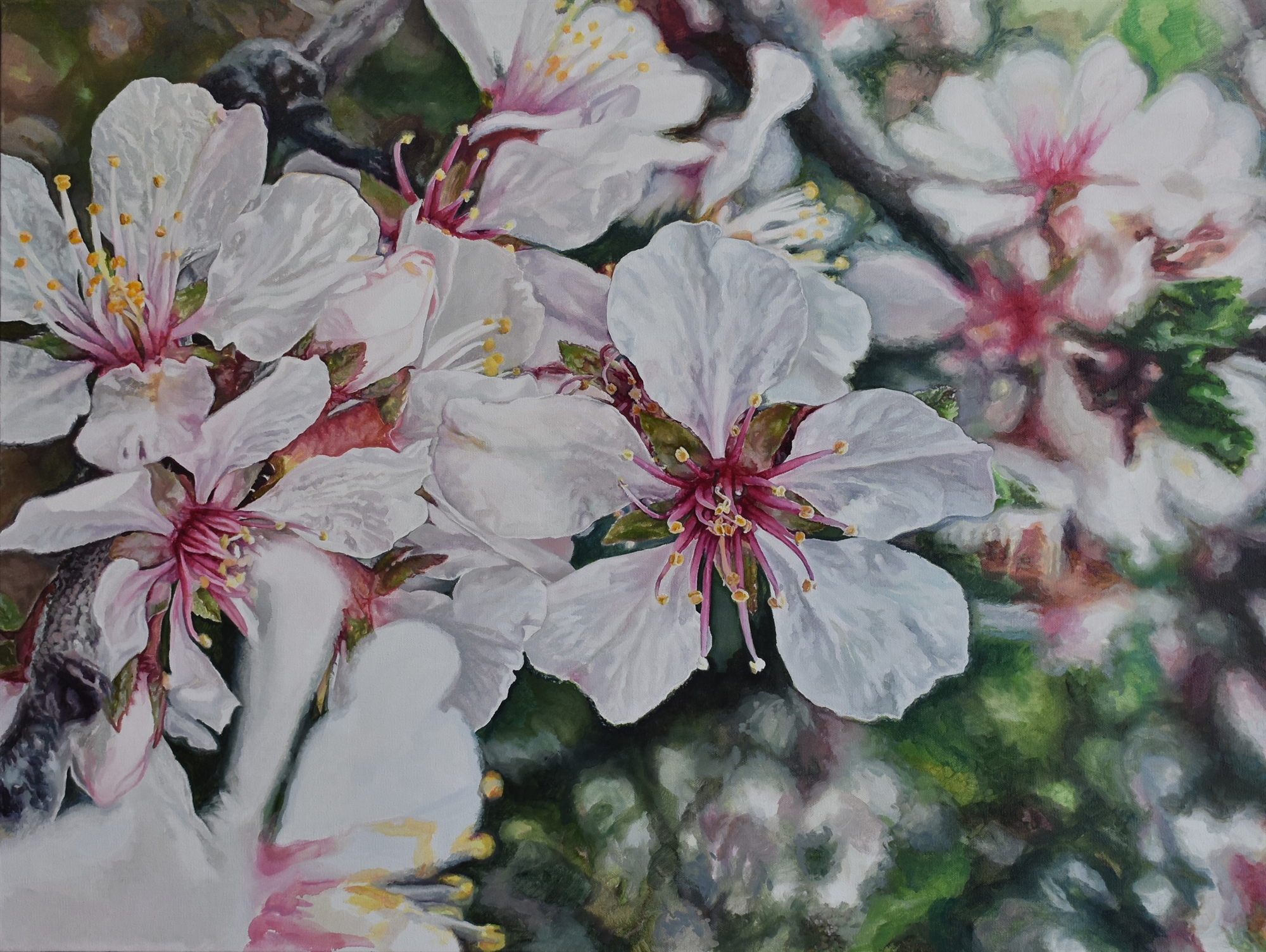 I Want to Do with You What Spring Does with the Cherry Trees by Hannah Moghbel