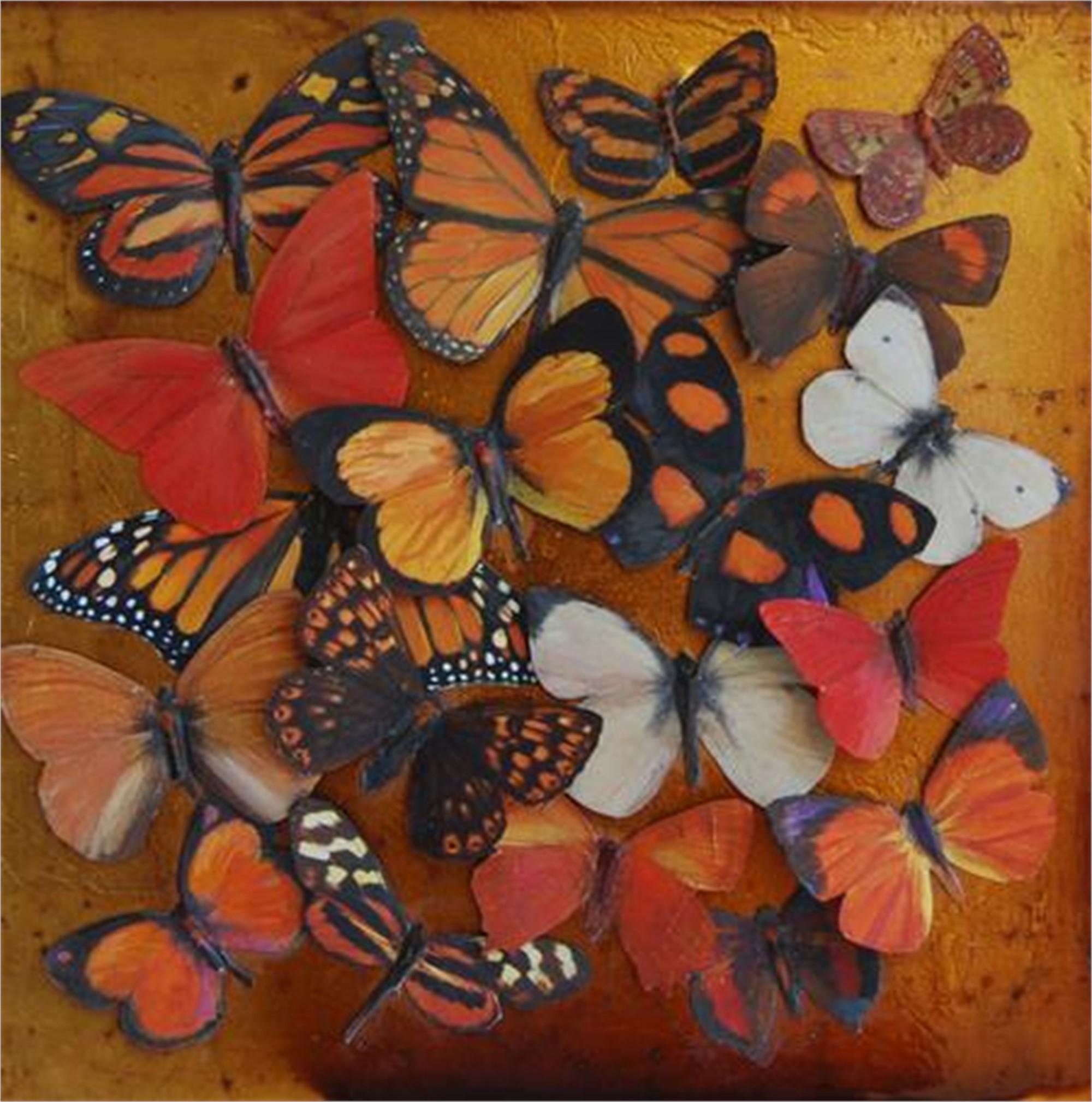 Butterfly Spectrum - Orange by Shelly Bartek