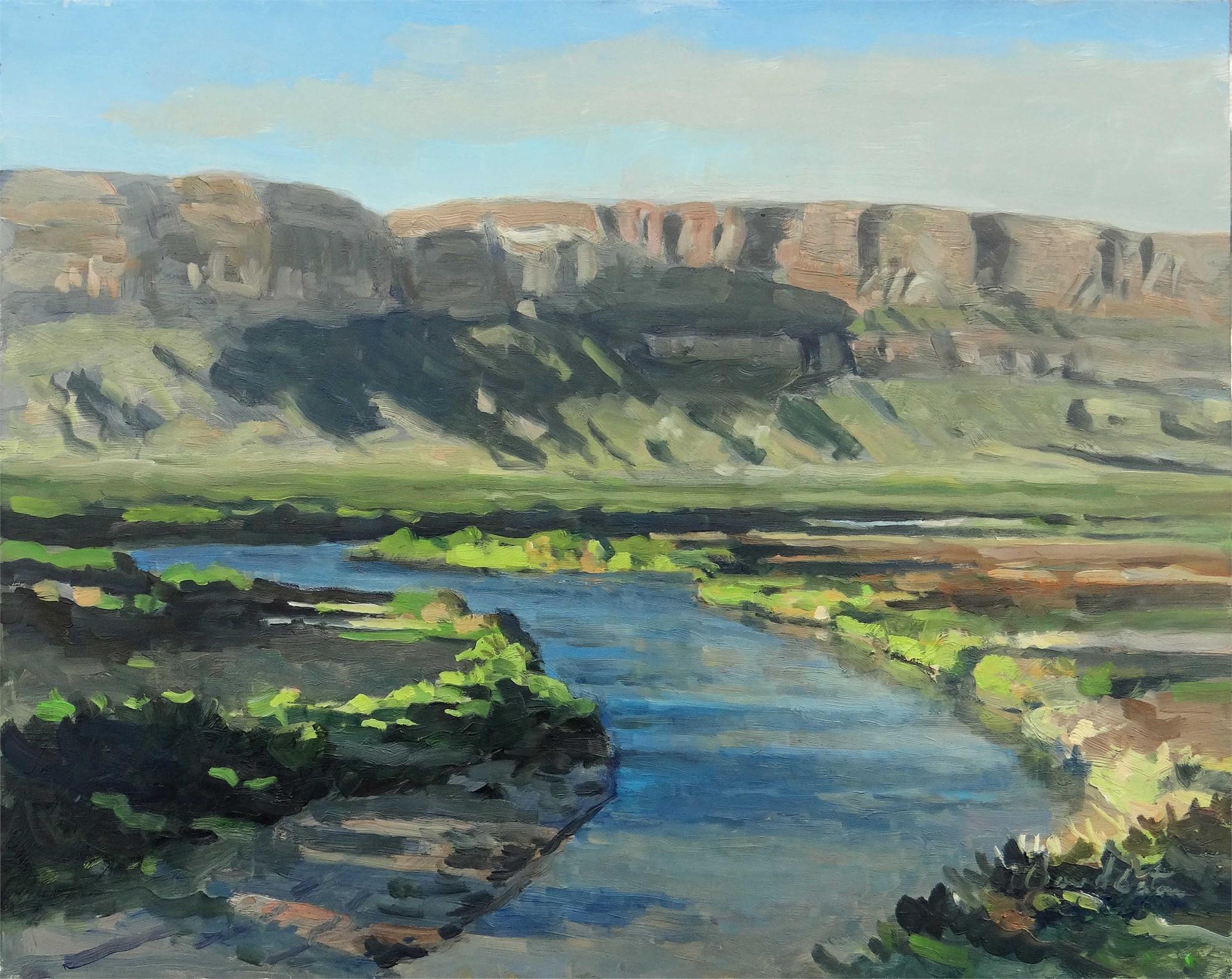 Rio Grande, Near Santa Elena Canyon #2 by David Caton
