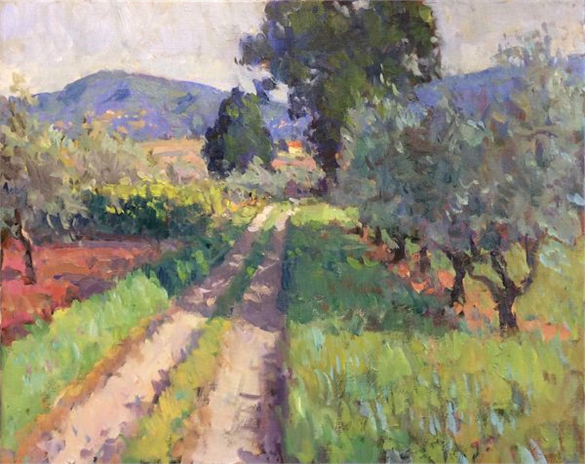 Tuscan Road by Richard Oversmith