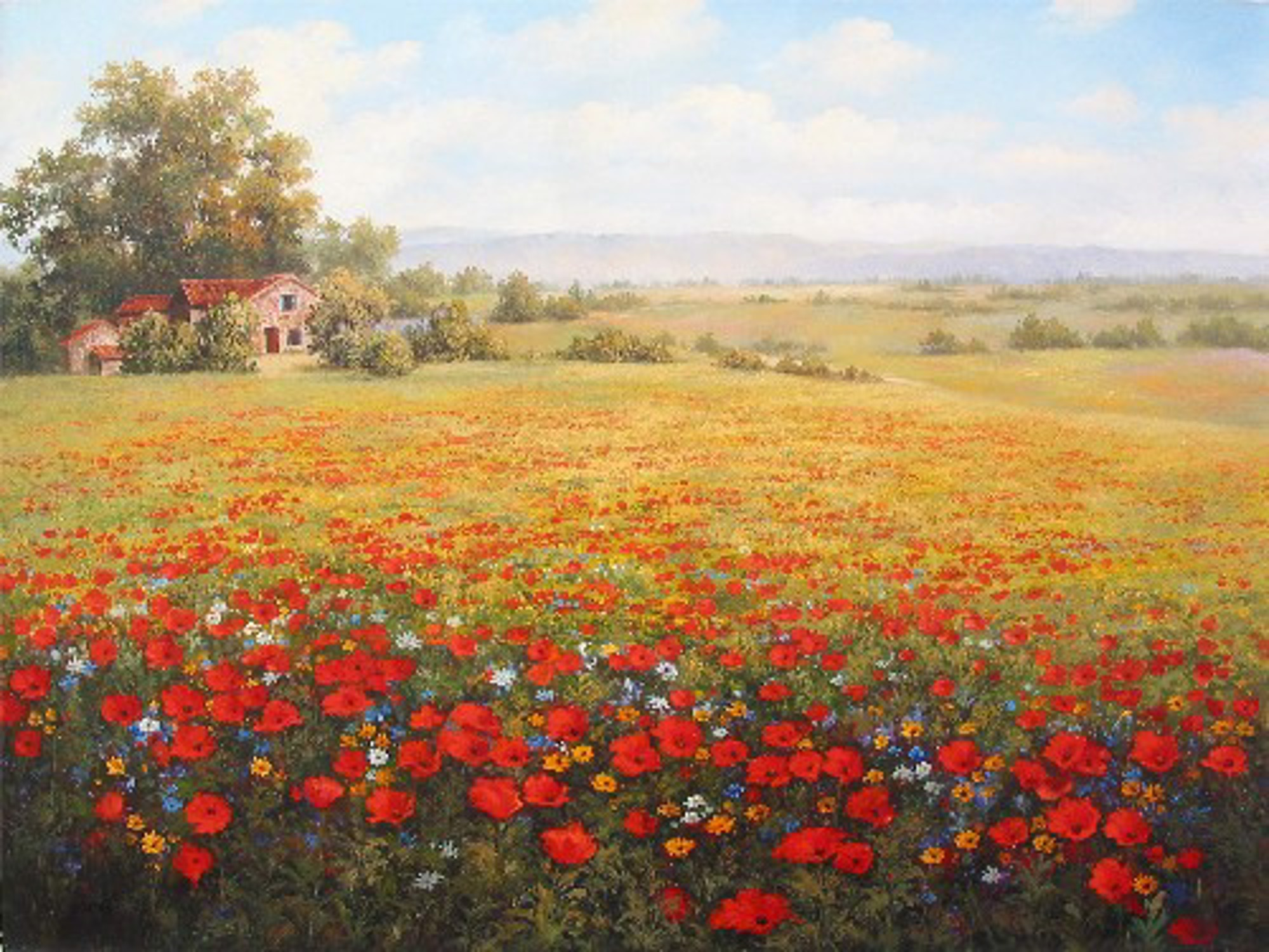 SHADOWS OF PROVENCE by M.S. PARK