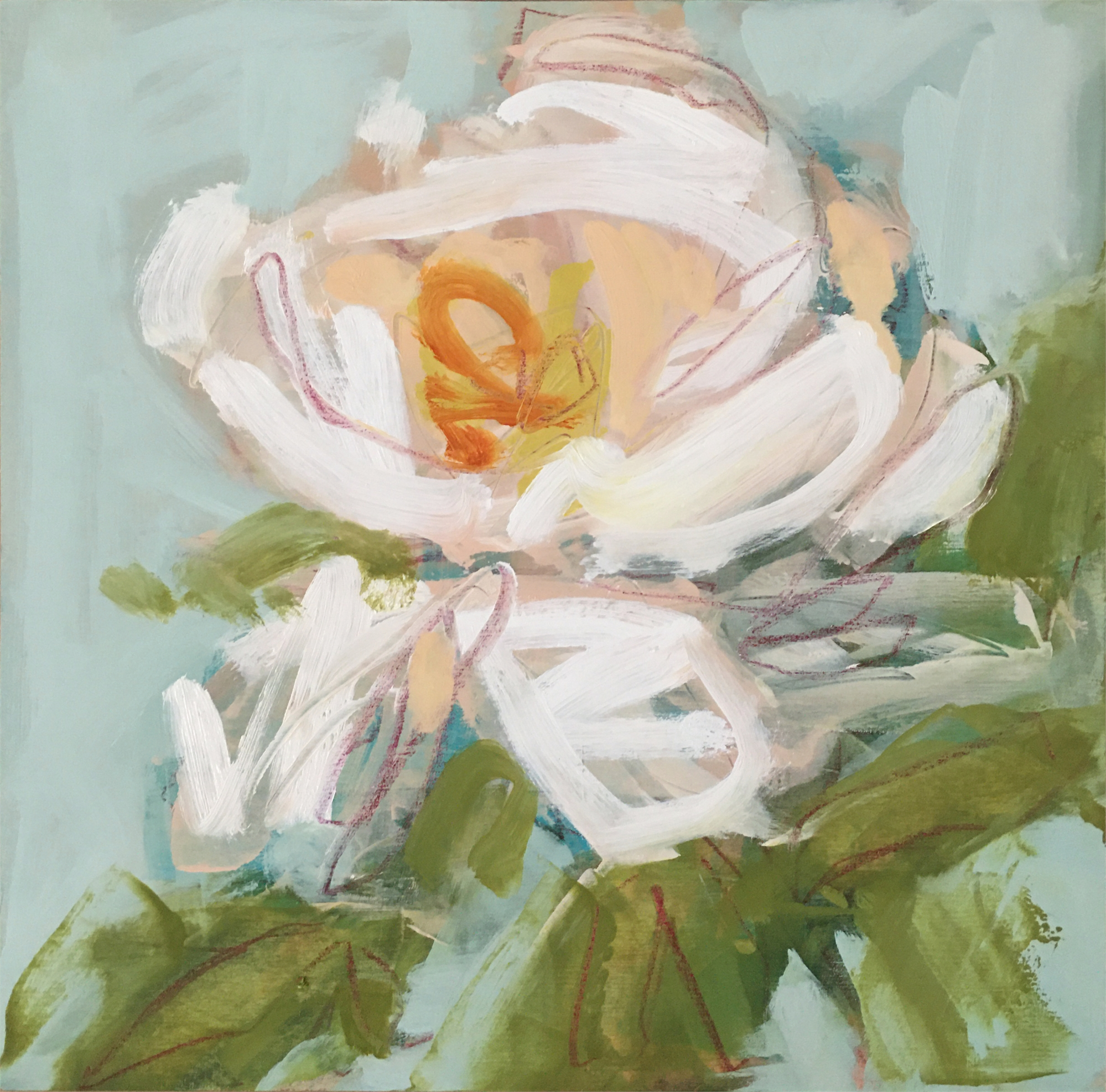 Peony Study I by Lynn Johnson
