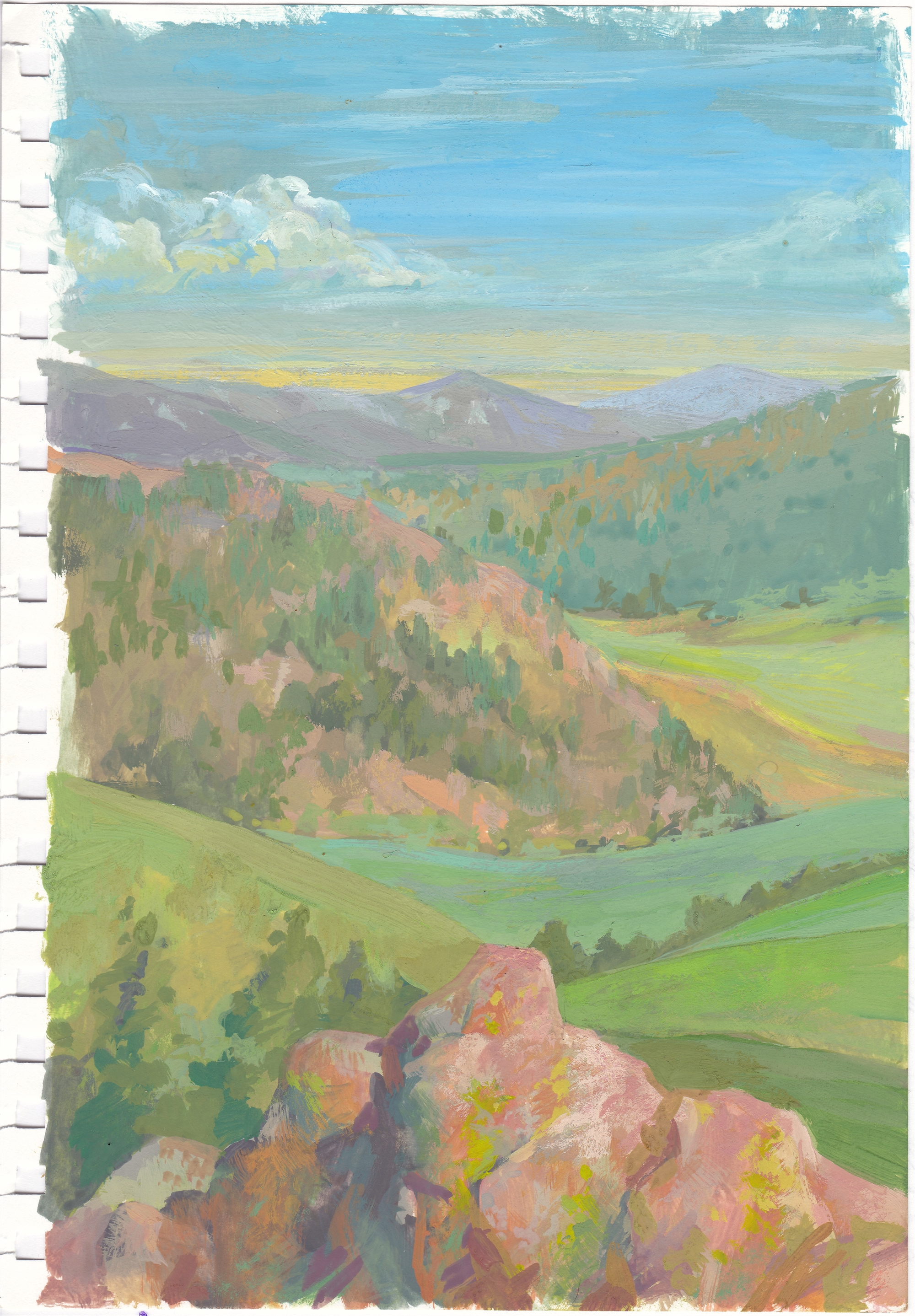 Study: Pink Boulder And The Valley by Charis Carmichael Braun