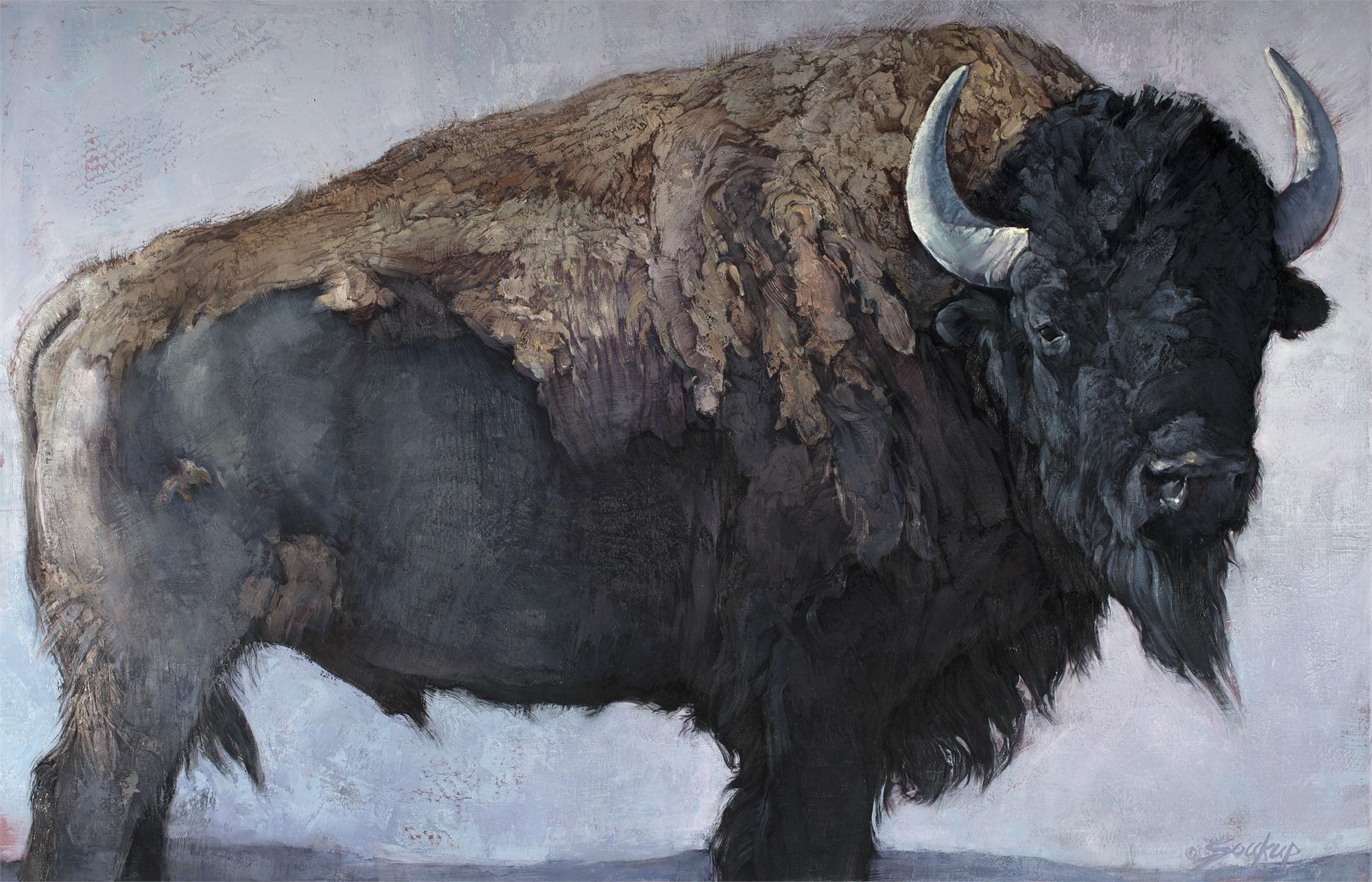 Bison Bull by Jill Soukup