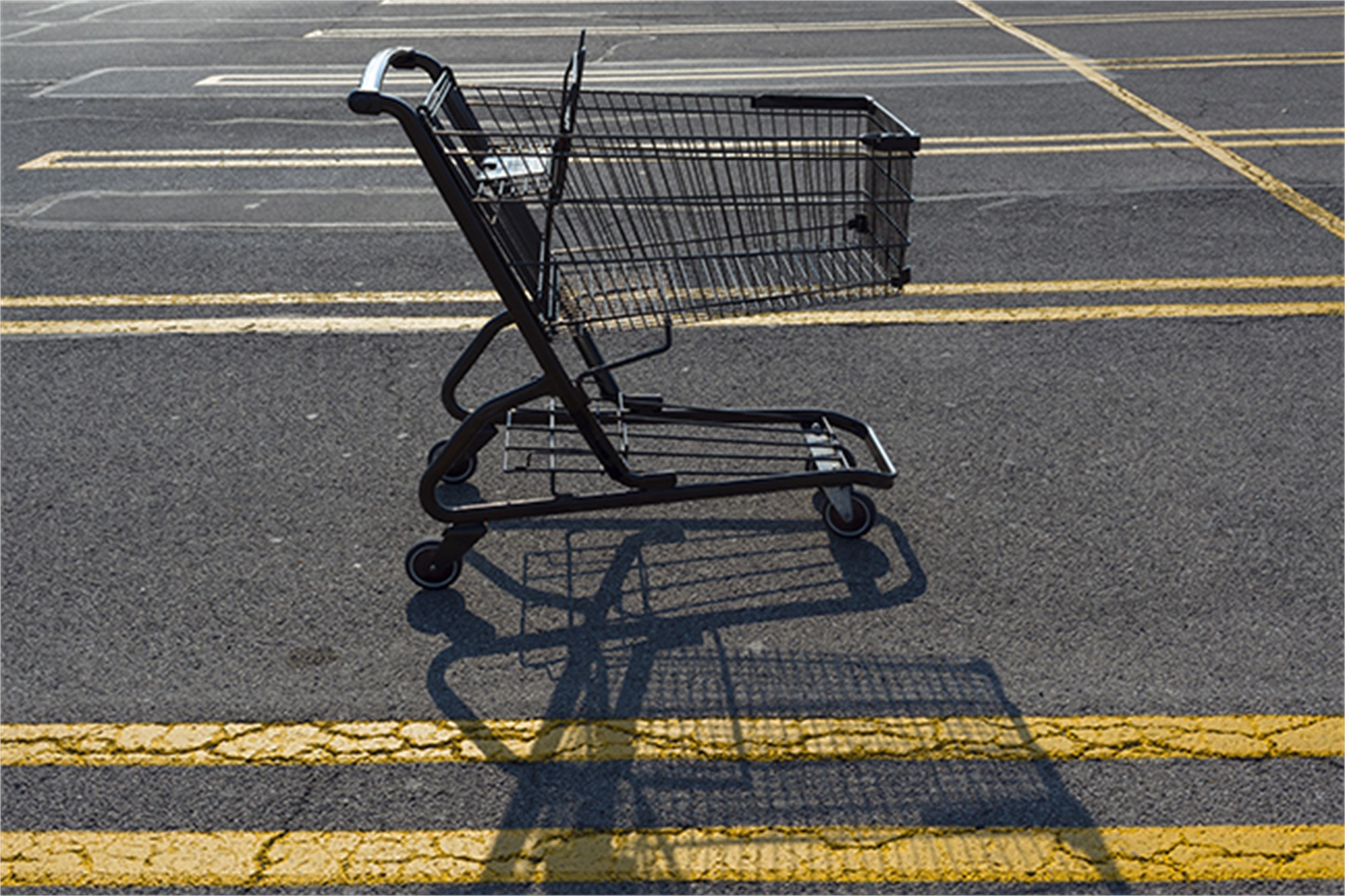 Grocery Cart by Frank Sherwood White