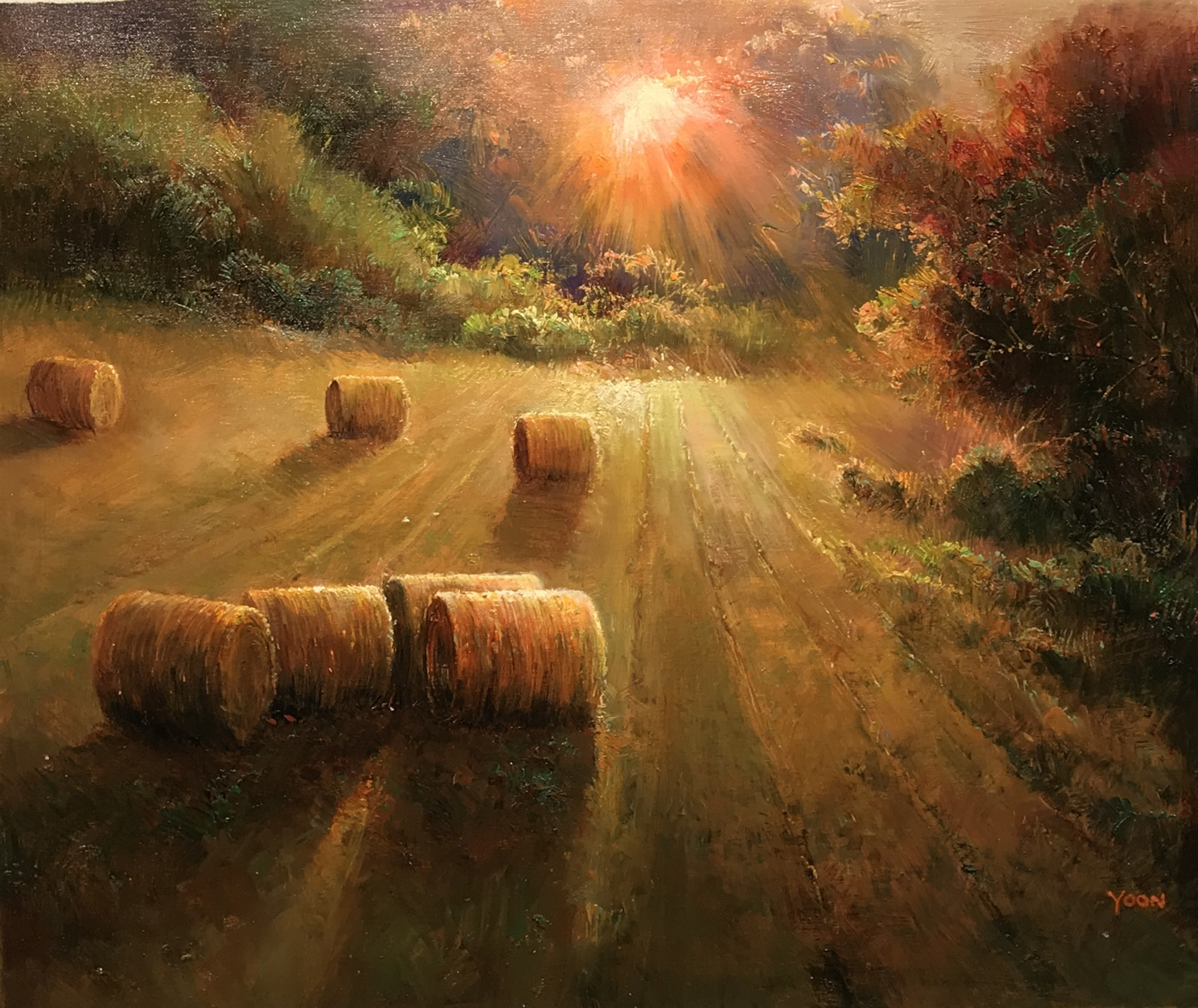 HAY ROLLS IN THE FIELD by MAX YOON