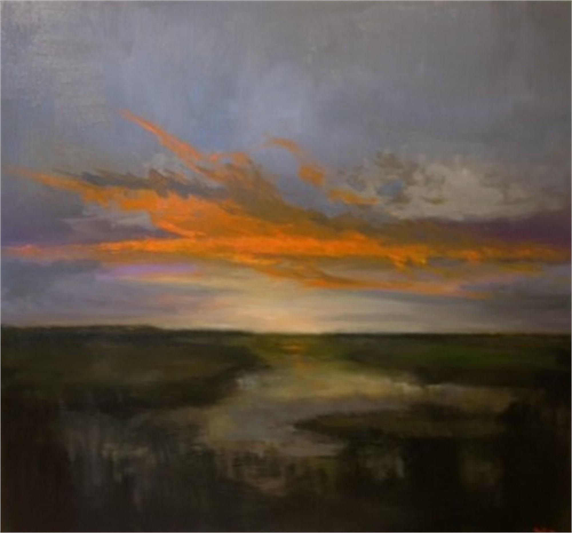 Wetlands Sunset by Jim Darlington