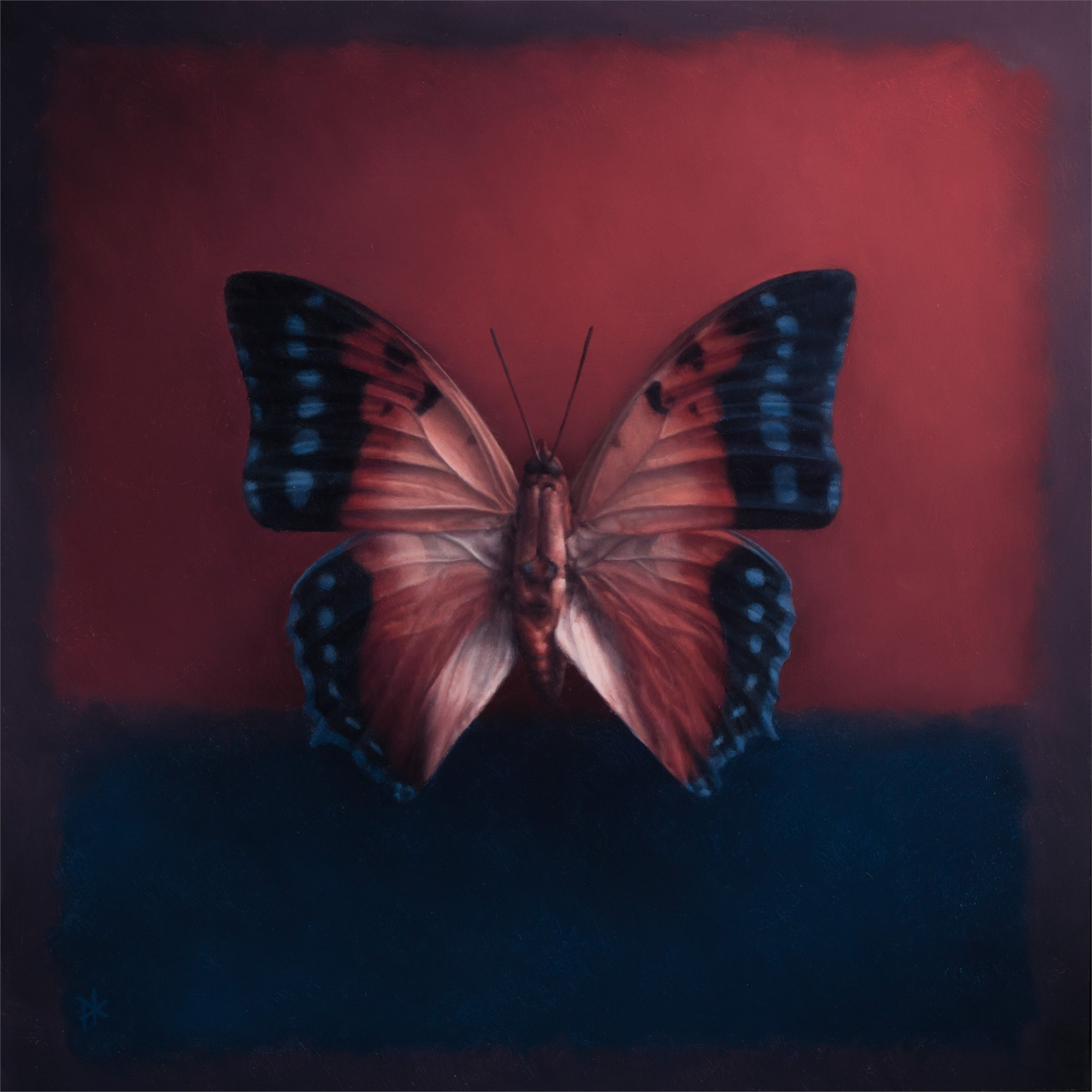 Butterfly 14 by Patrick Kramer