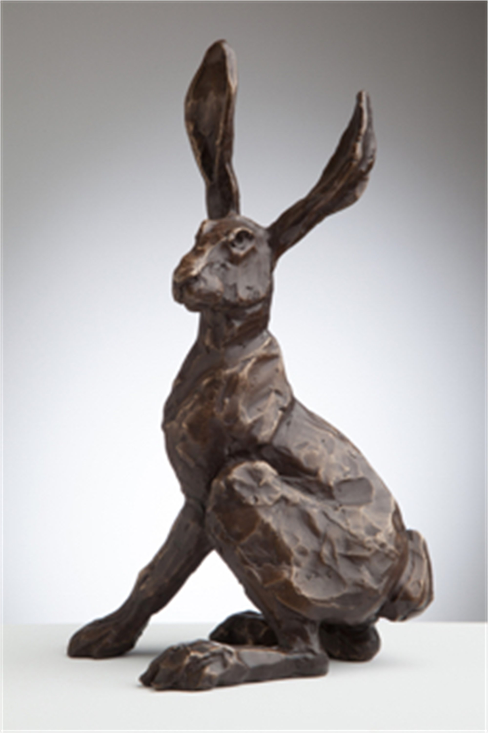 Sitting Jack Rabbit by Mary Baxter