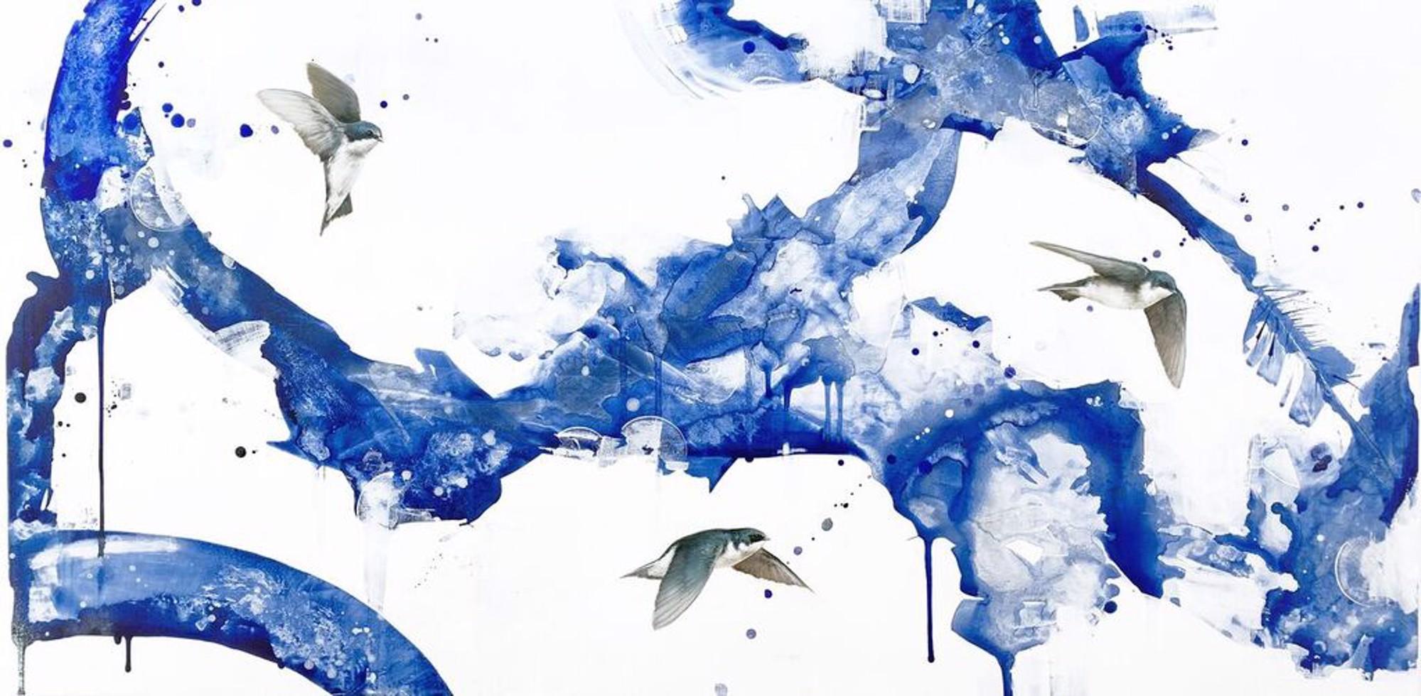 Migration by Jessica Pisano