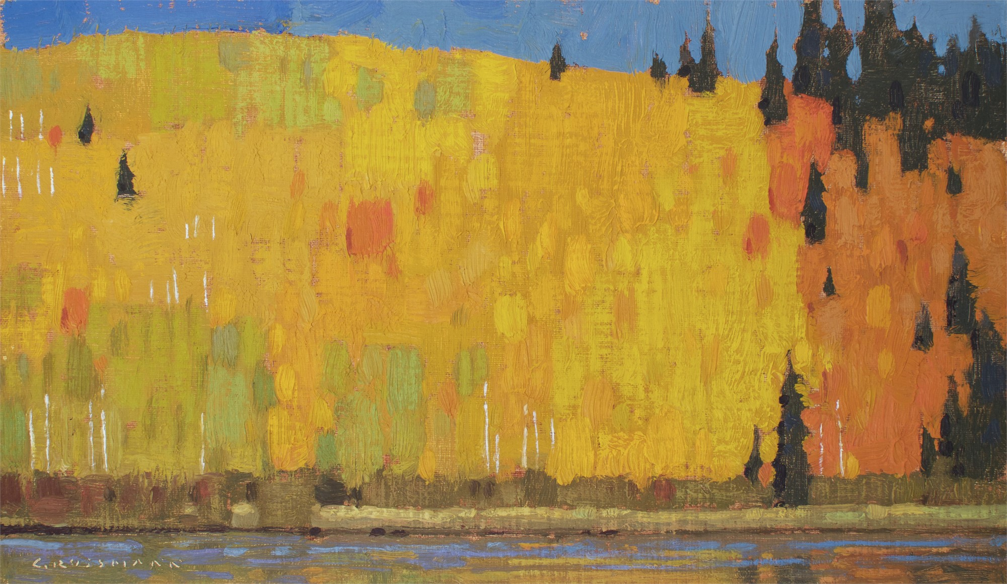 September Aspen and Pine Patterns by David Grossmann