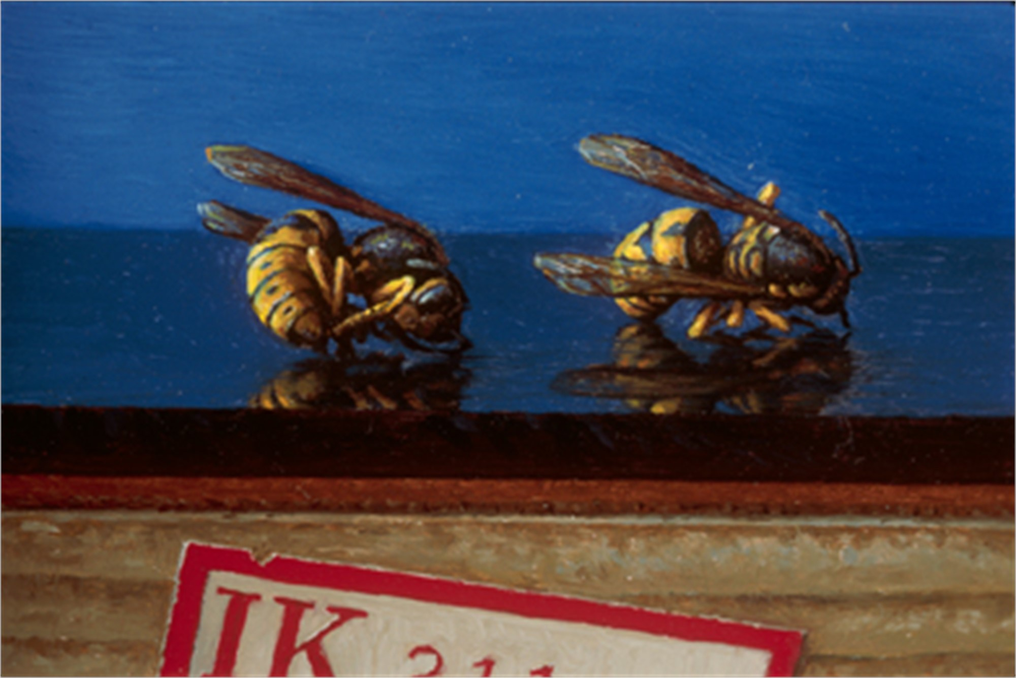 Two Wasps by Scott Fraser