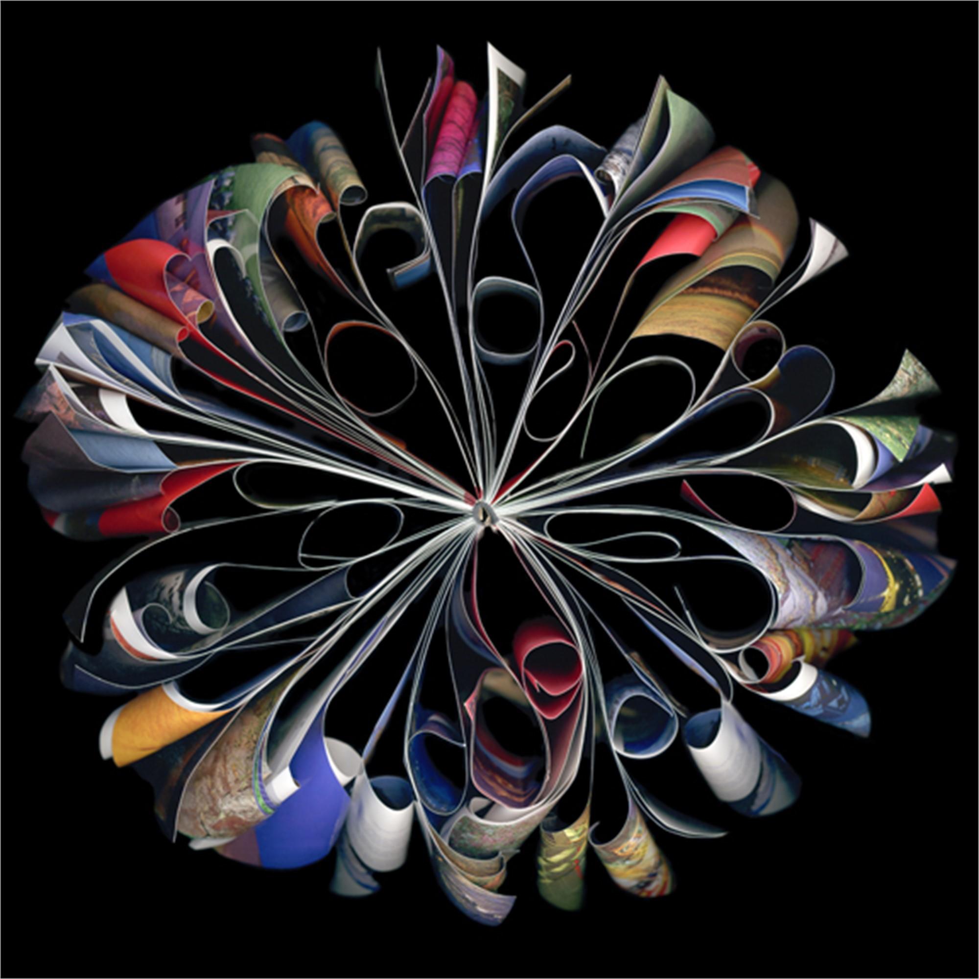 Carousel by Cara Barer