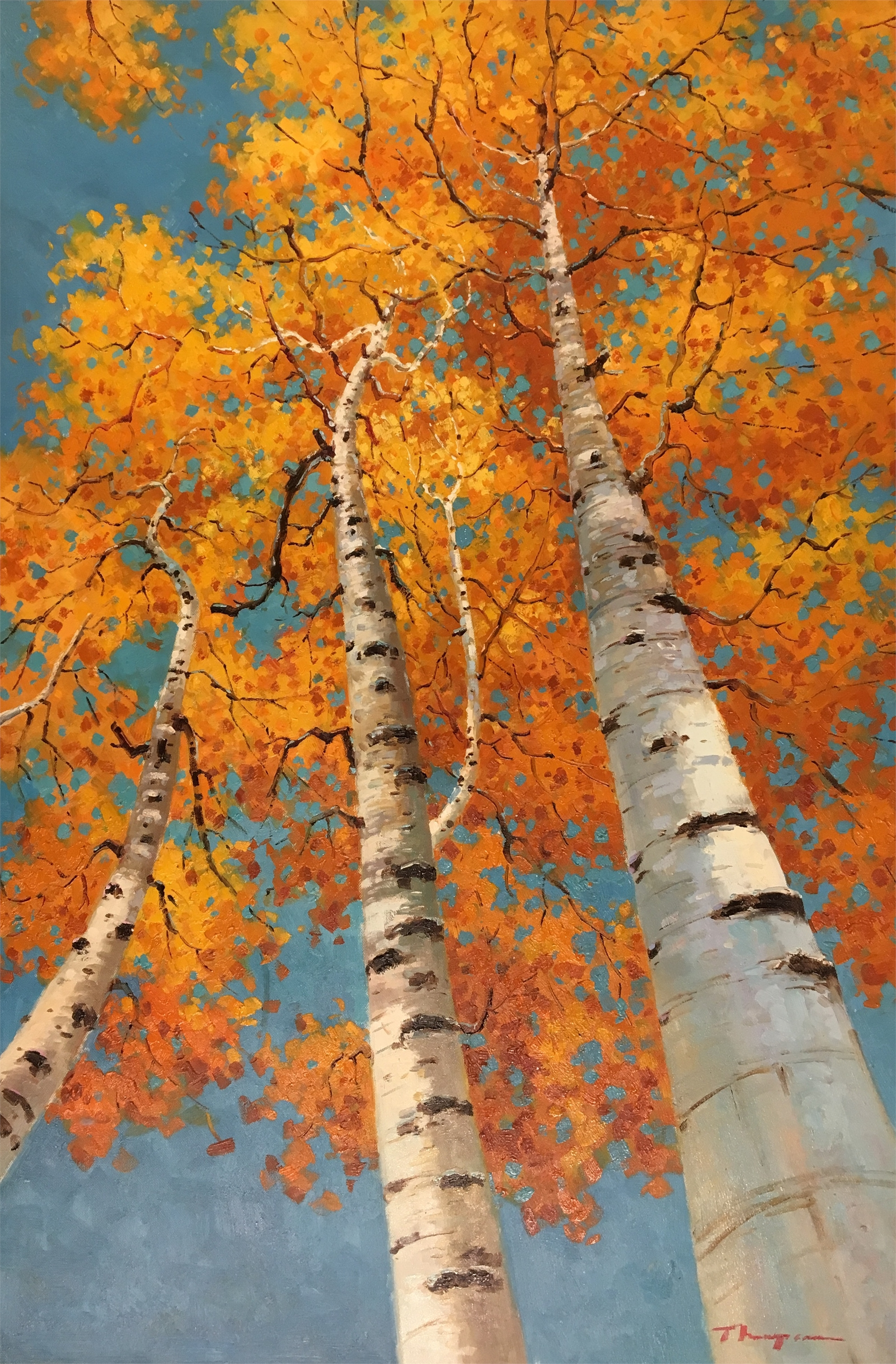 3 ORANGE ASPENS FROM BELOW by THOMPSON