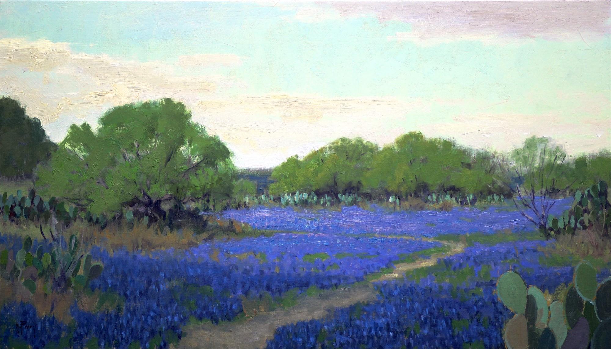 Path thru the Bluebonnets by Noe Perez