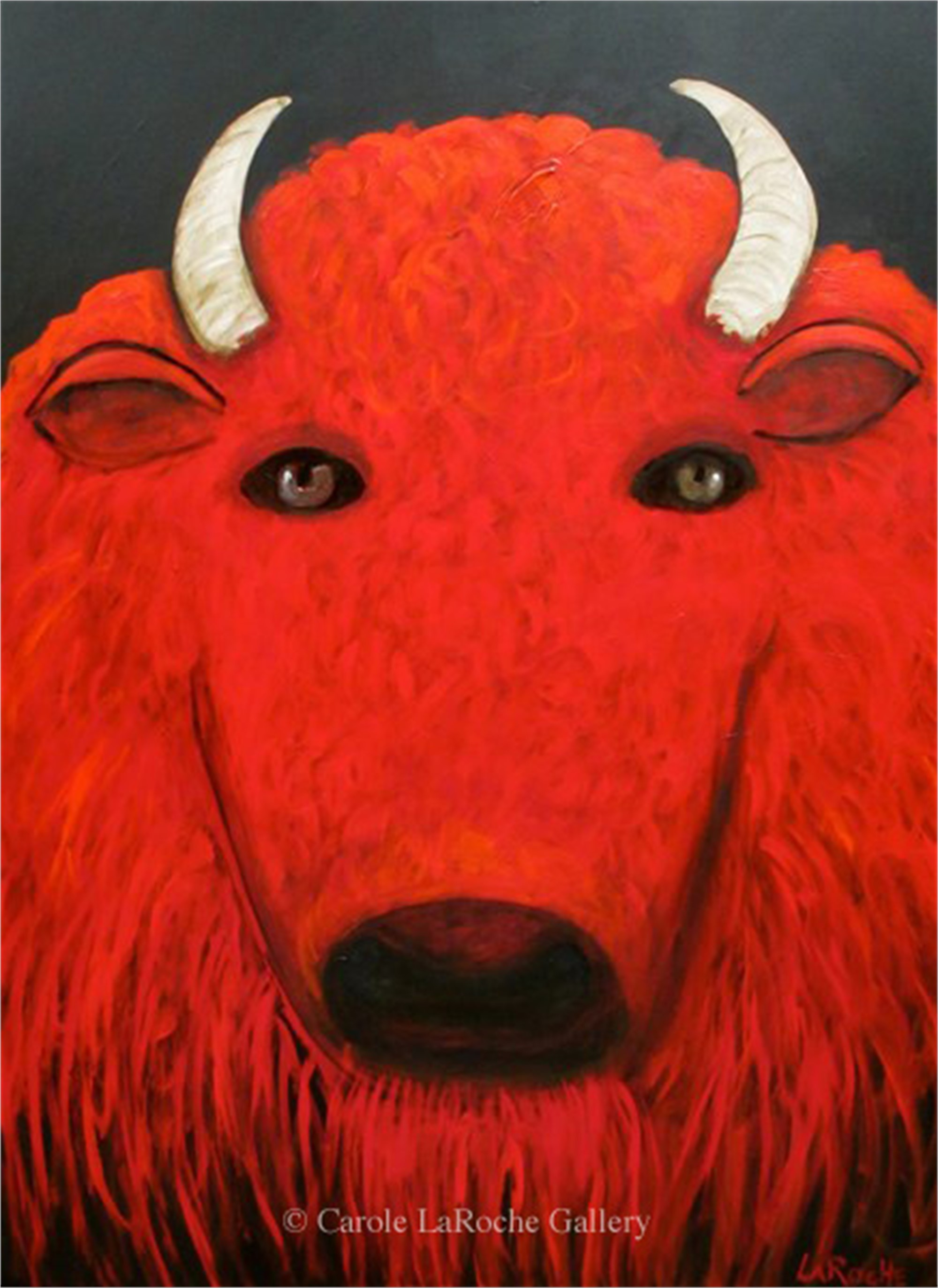 RED BUFFALO by Carole LaRoche