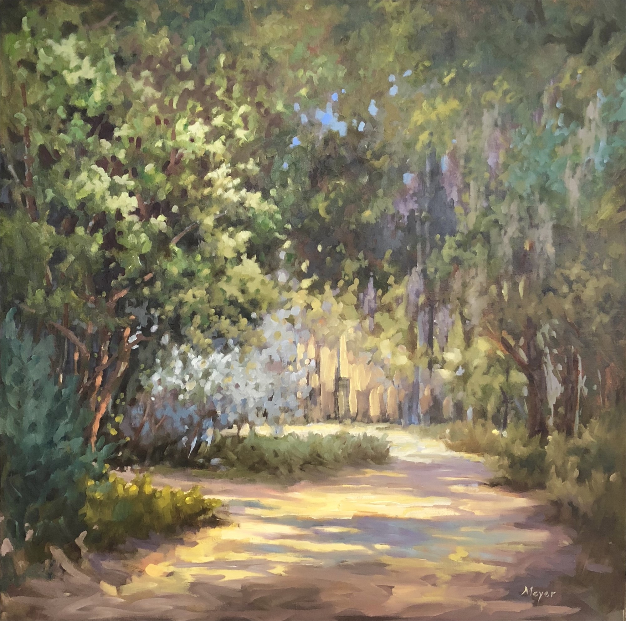 A Mile Up the Road by Laurie Meyer