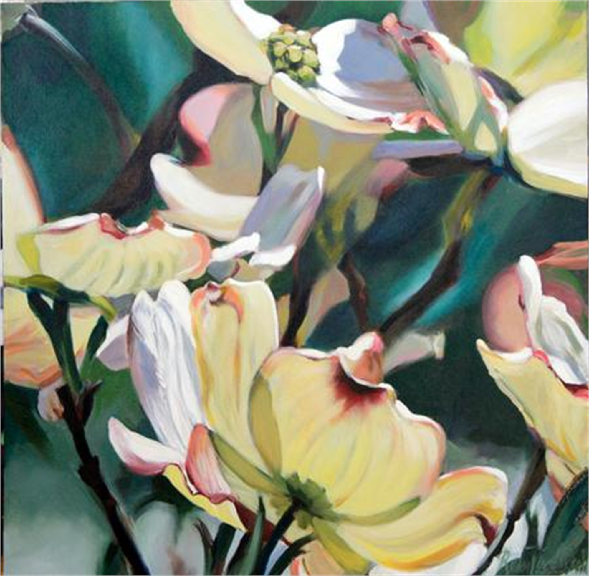 Translucent Dogwood by Rein Vanderhill