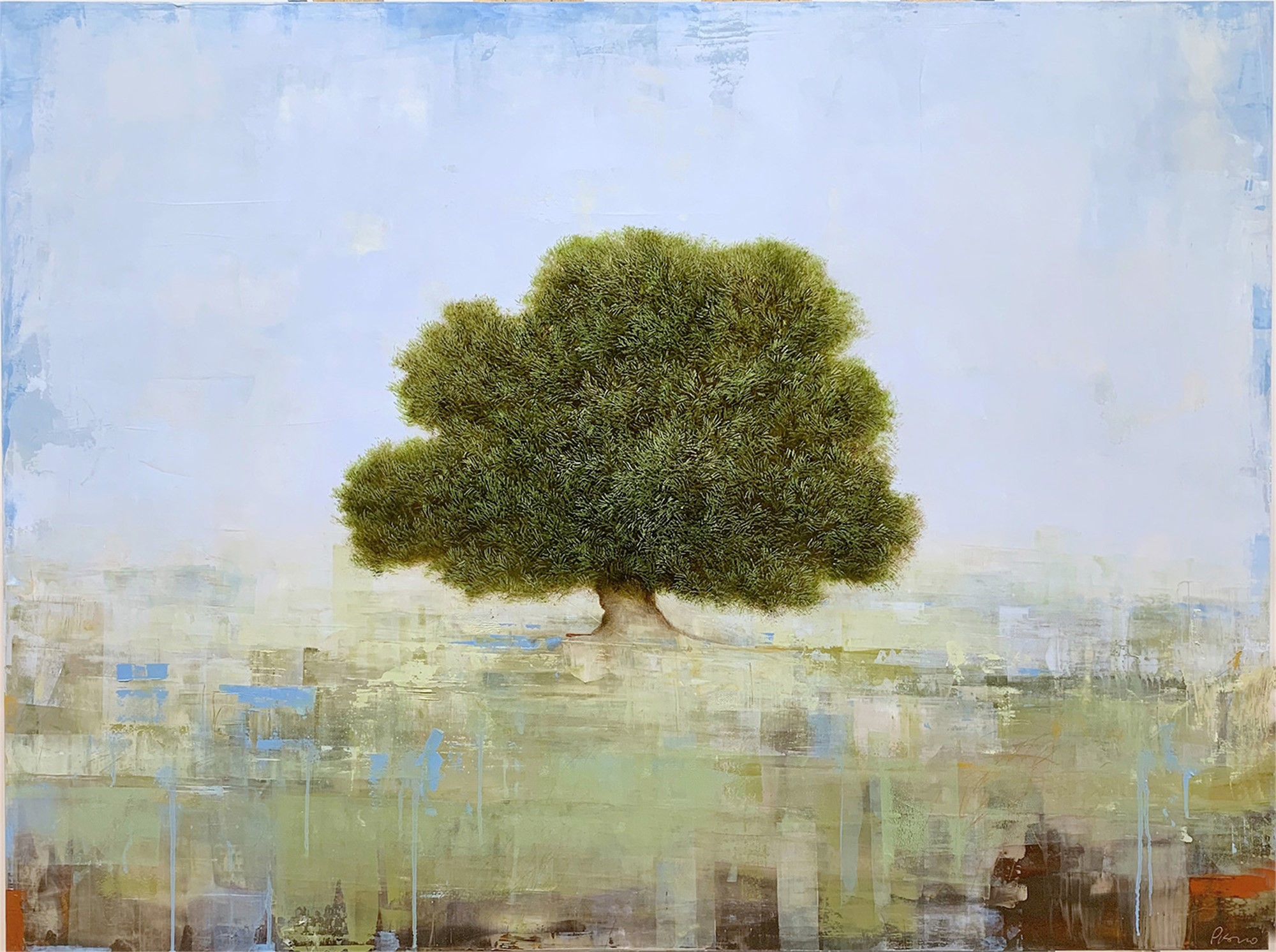 Old Olive Tree by Jessica Pisano