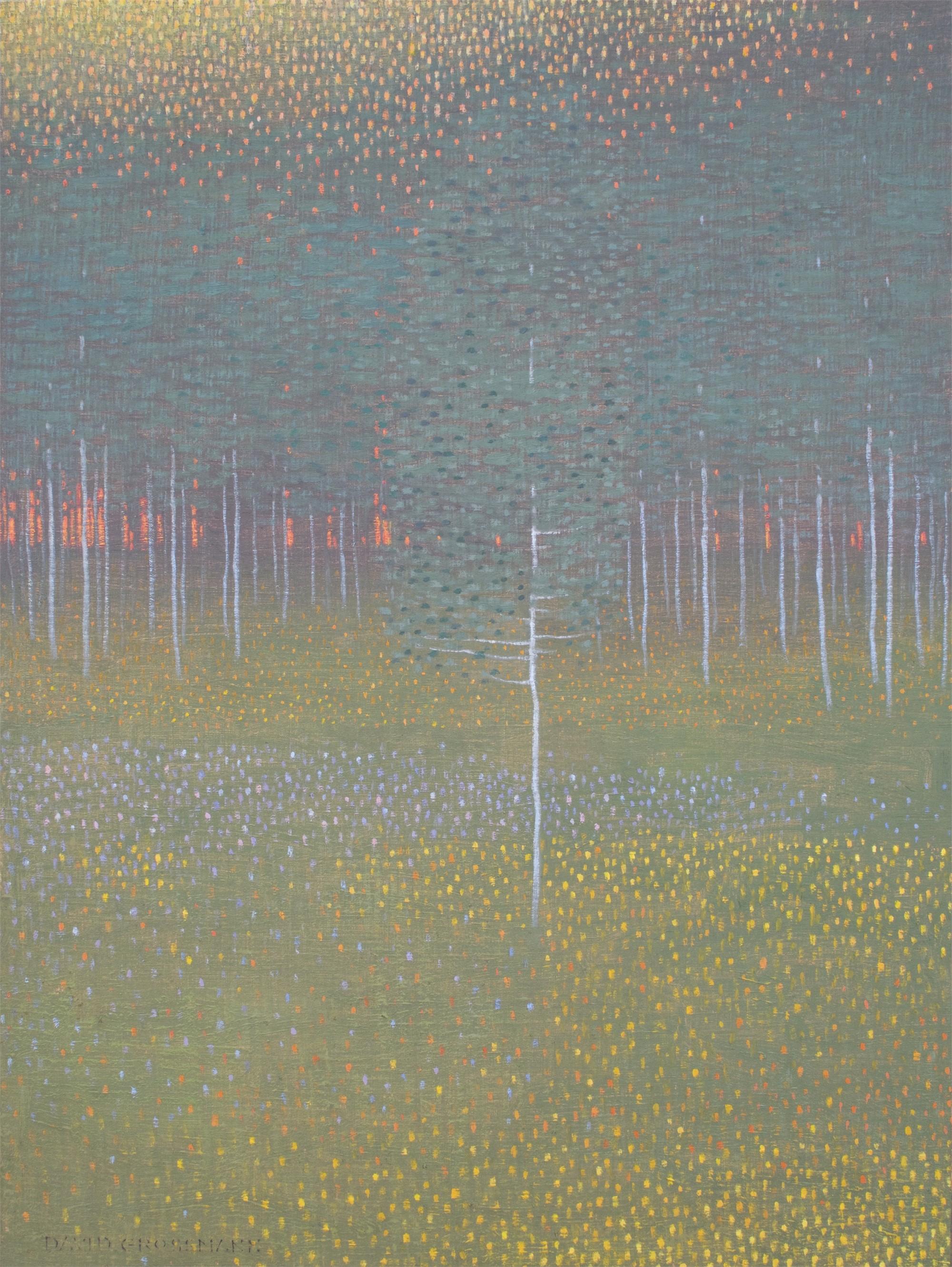 Summer Evening Glow by David Grossmann