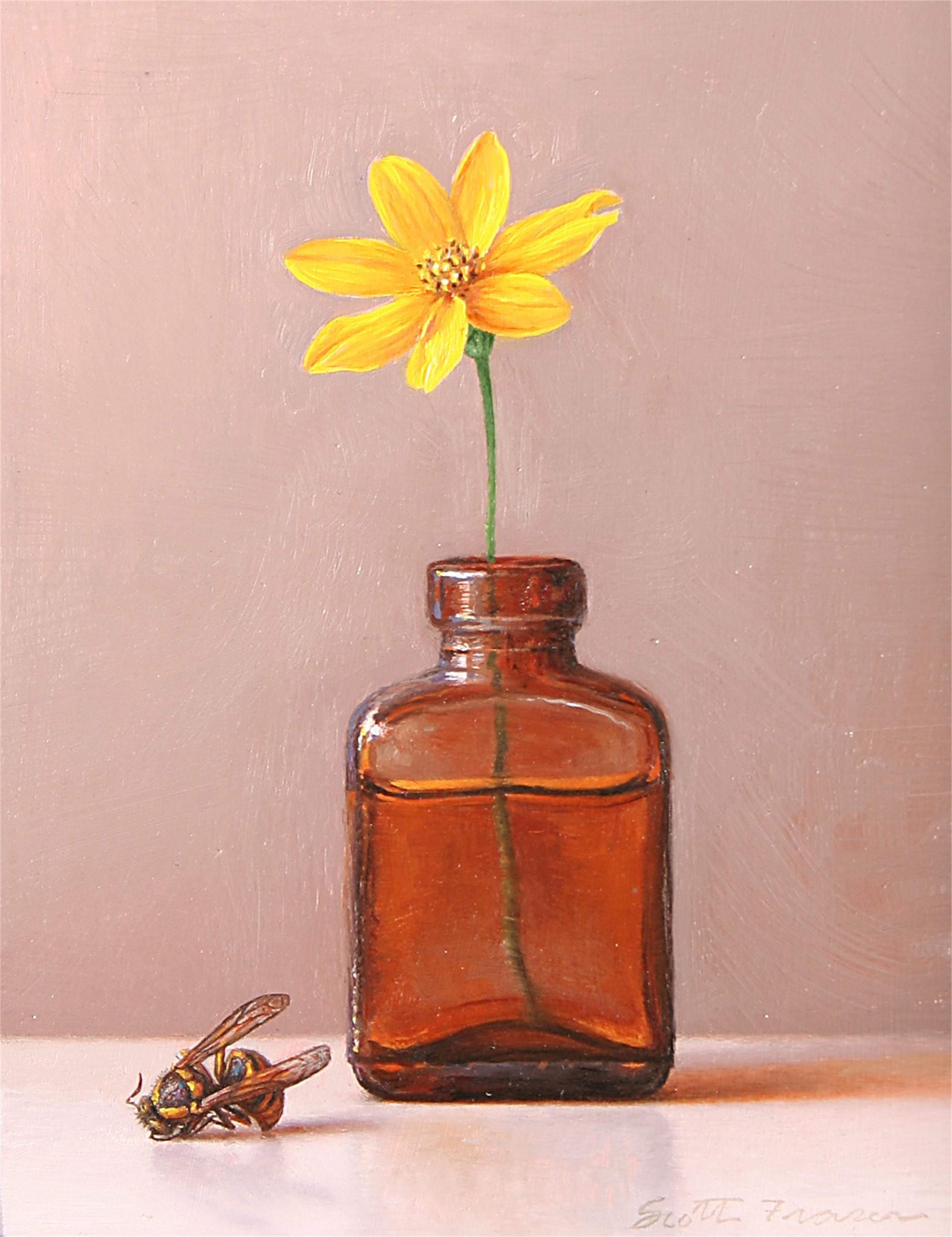 Flower Bottle Wasp by Scott Fraser