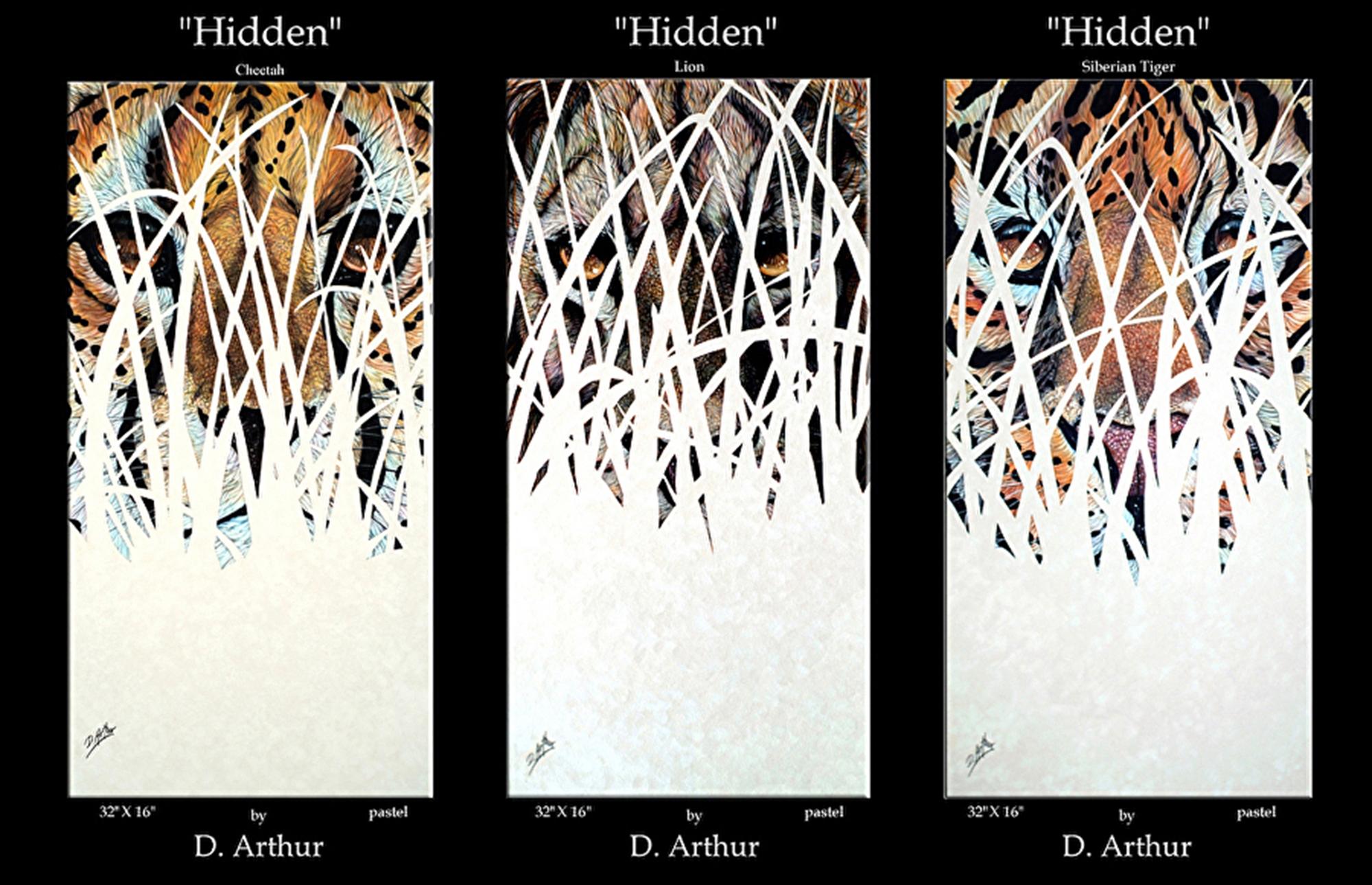 Hidden Series by D. Arthur