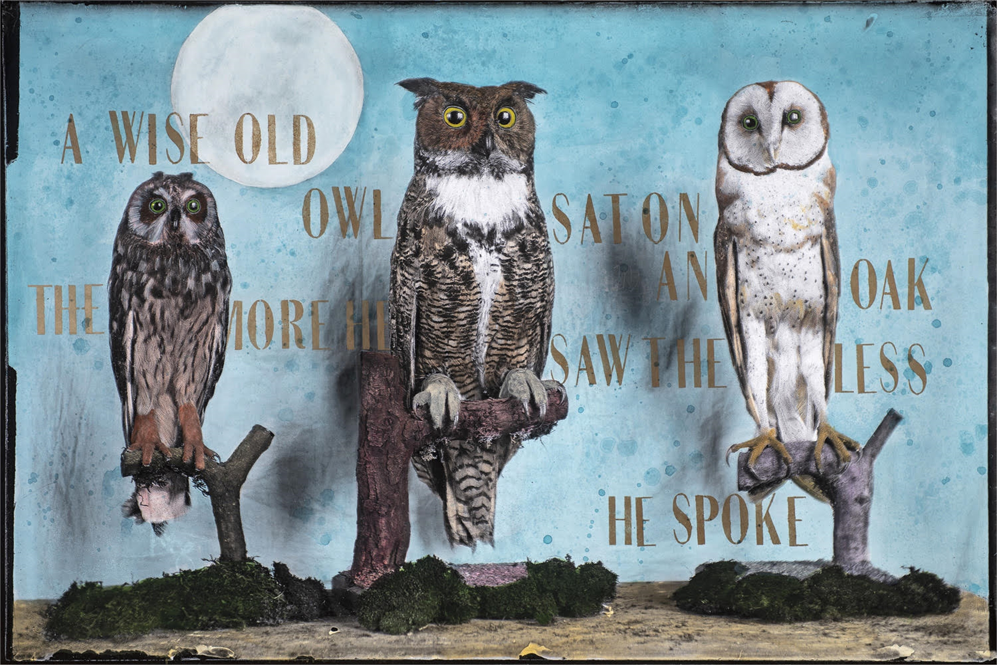 The Wise Old Owls by Alexandra Eldridge