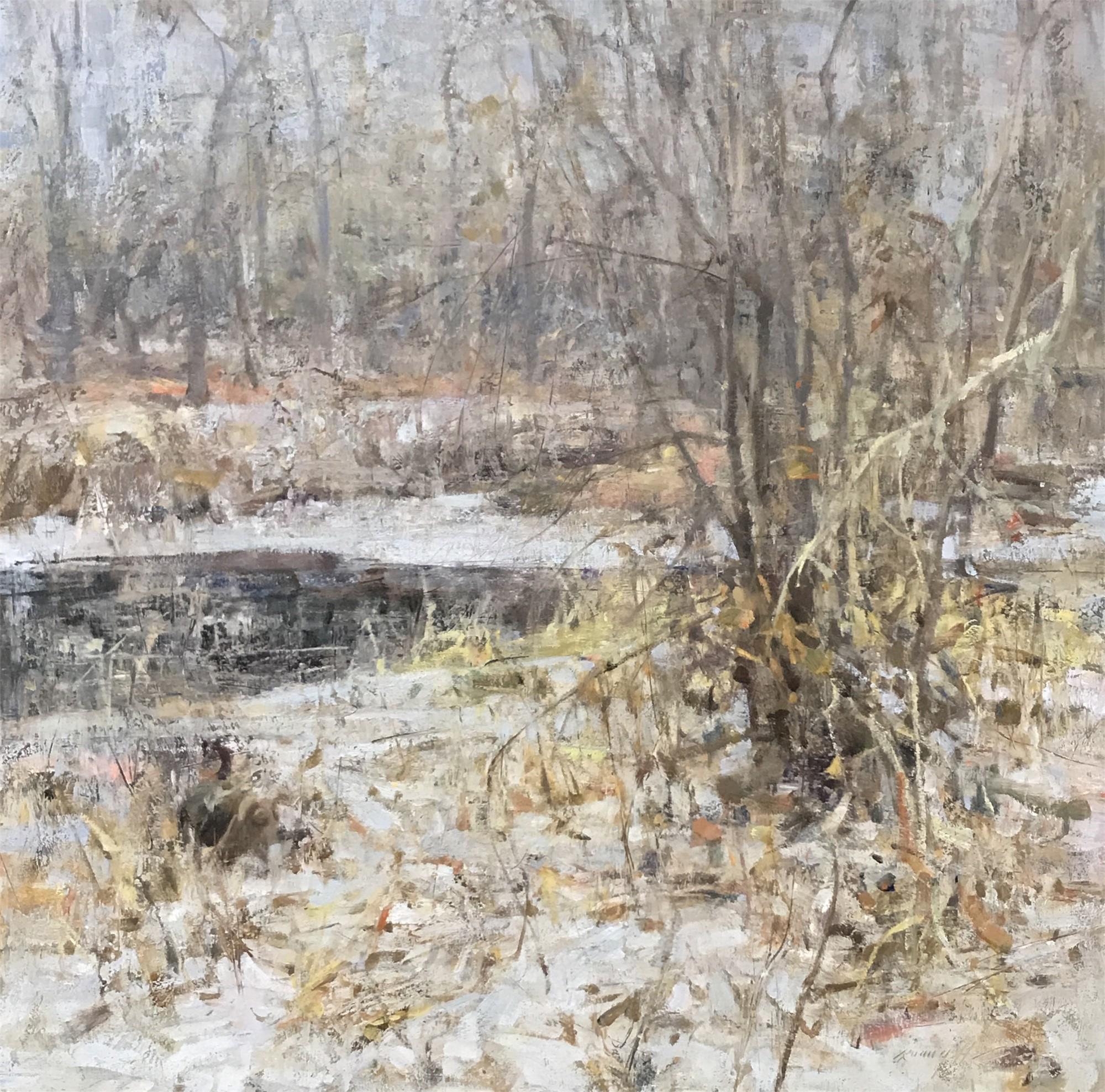 Winter Walk, Bear Creek by Quang Ho