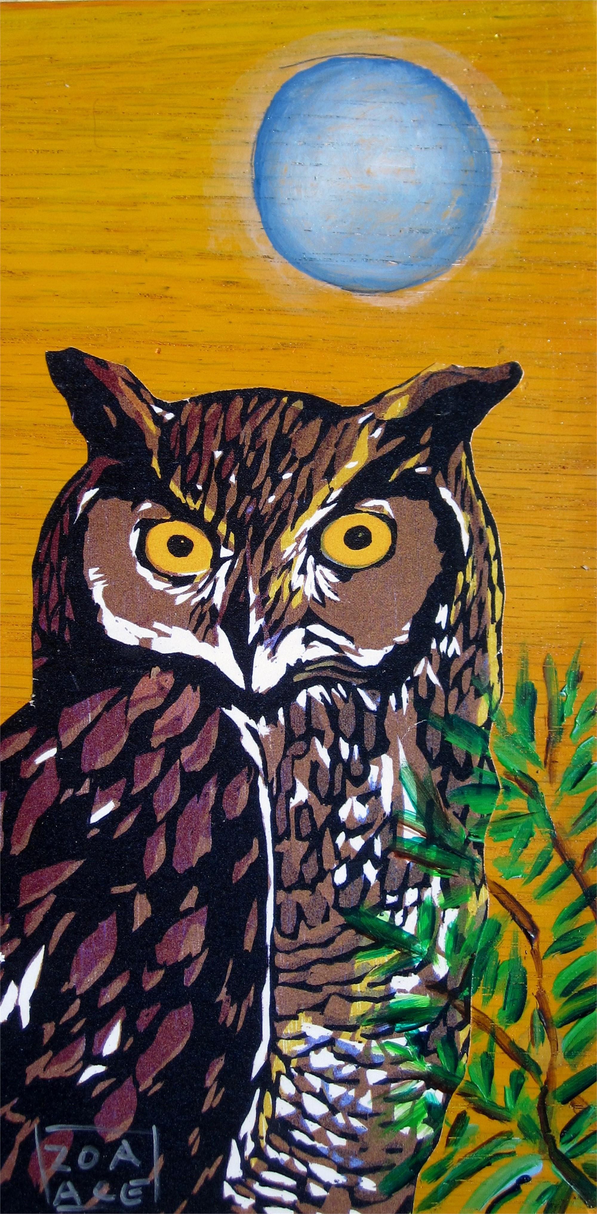 Night Owl by Zoa Ace