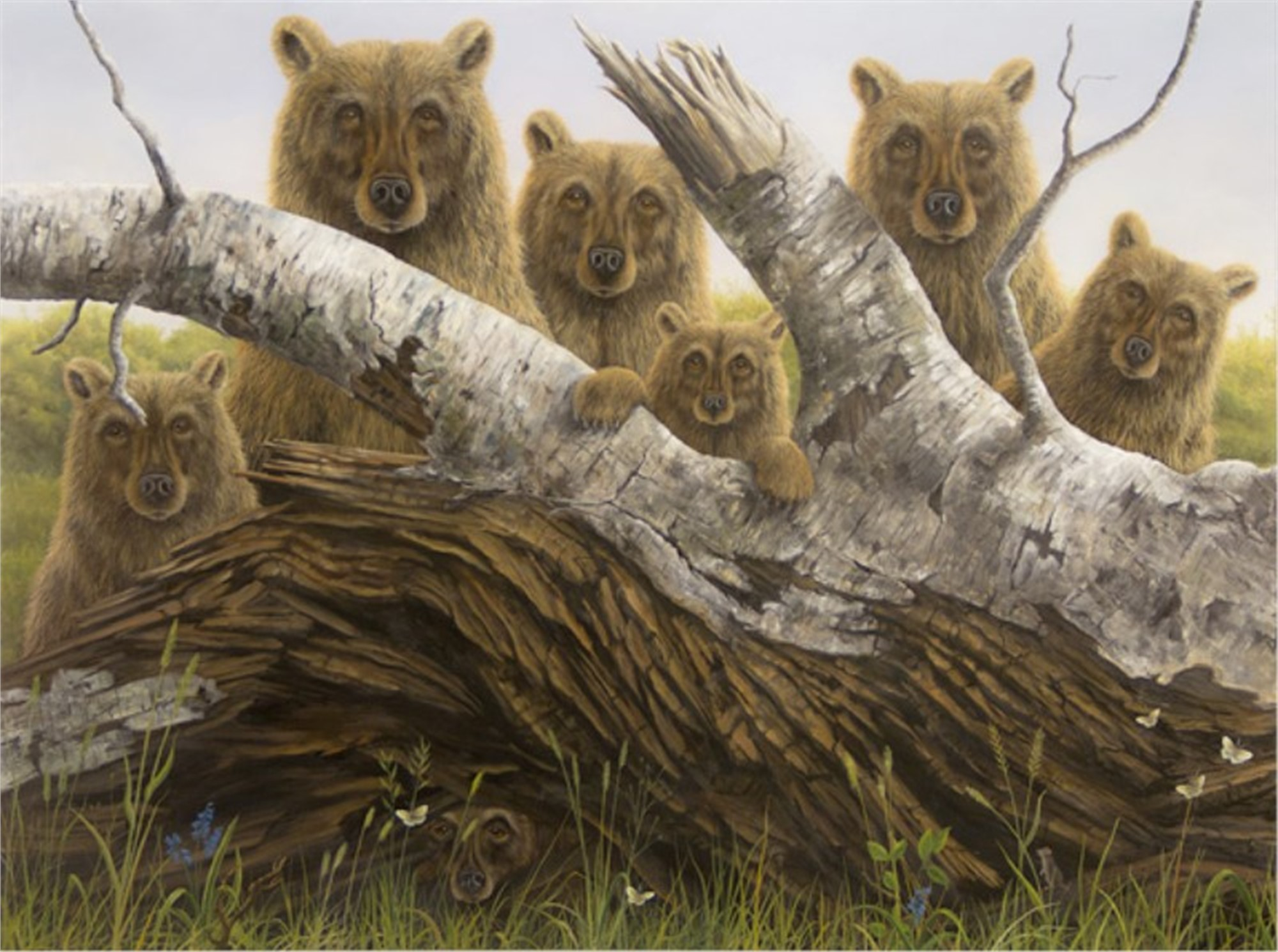 Portrait, The (Collector Edition) by Robert Bissell